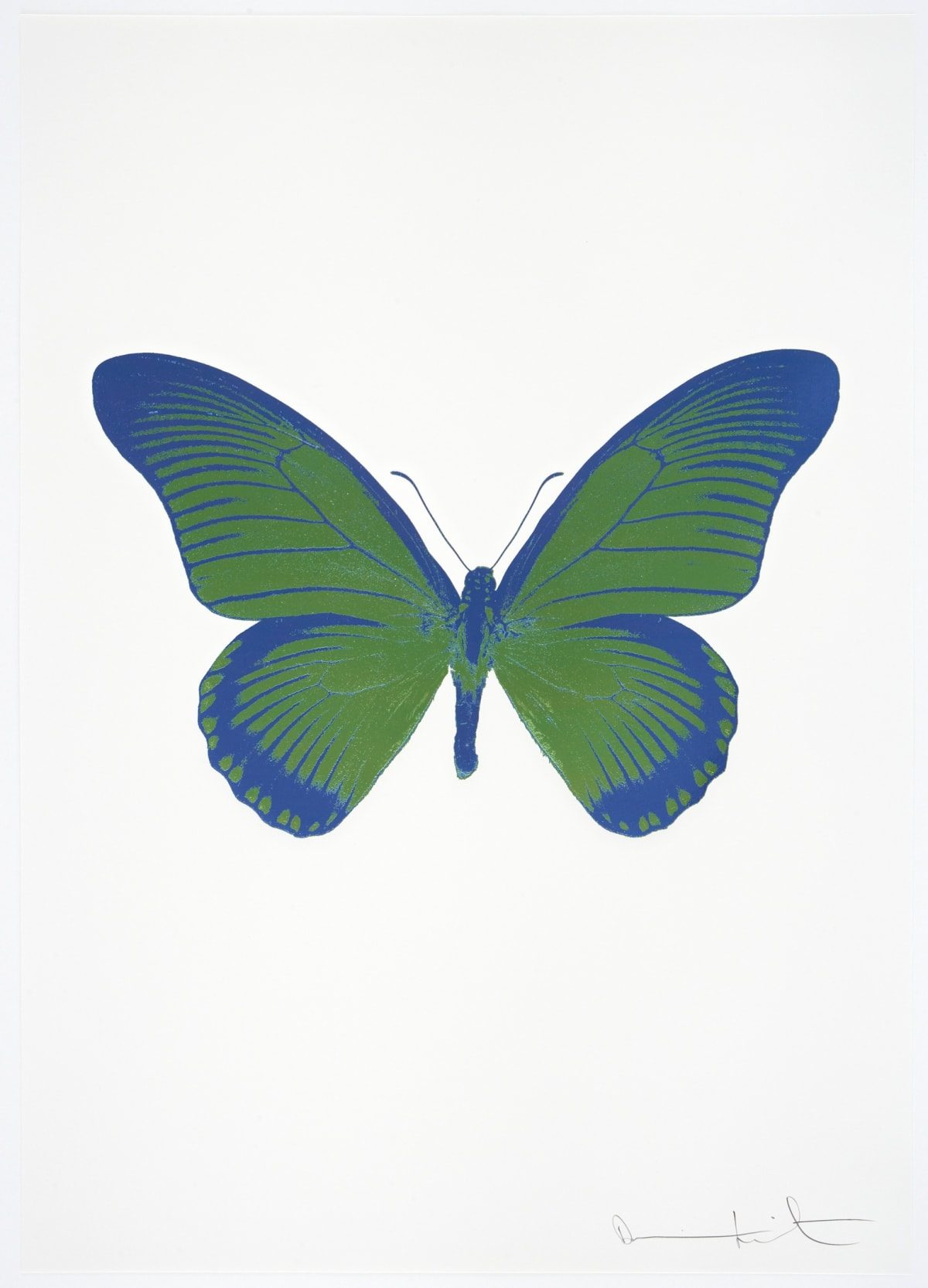 Damien Hirst The Souls IV - Leaf Green/Frost Blue/Frost Blue Damien Hirst butterfly foil print for sale Damien Hirst print for sale , 2010 2 colour foil block on 300gsm Arches 88 archival paper. Signed and numbered. Published by Paul Stolper and Other Criteria 72 x 51cm OC8042 / 1418-65 Edition of 15