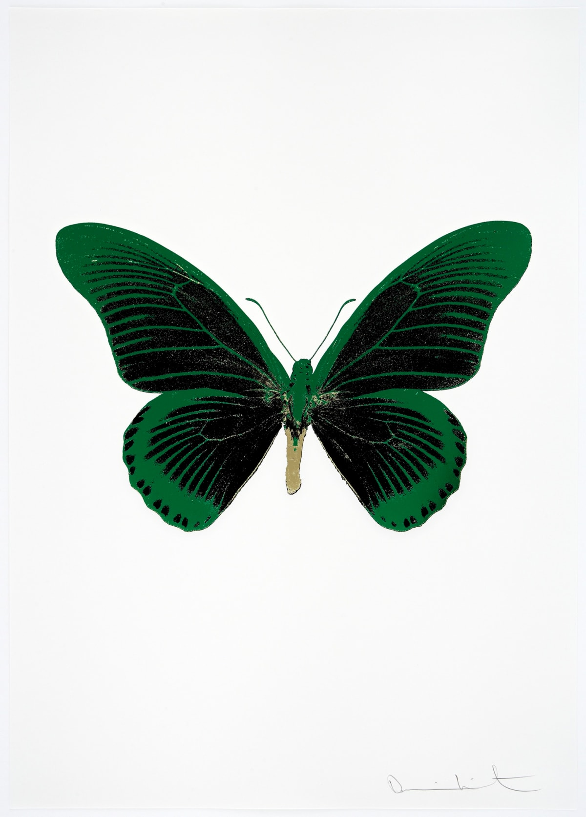Damien Hirst The Souls IV - Raven Black/Emerald Green/Cool Gold Damien Hirst butterfly foil print for sale Damien Hirst print for sale , 2010 3 colour foil block on 300gsm Arches 88 archival paper. Signed and numbered. Published by Paul Stolper and Other Criteria 72 x 51cm OC8051 / 1418-74 Edition of 15