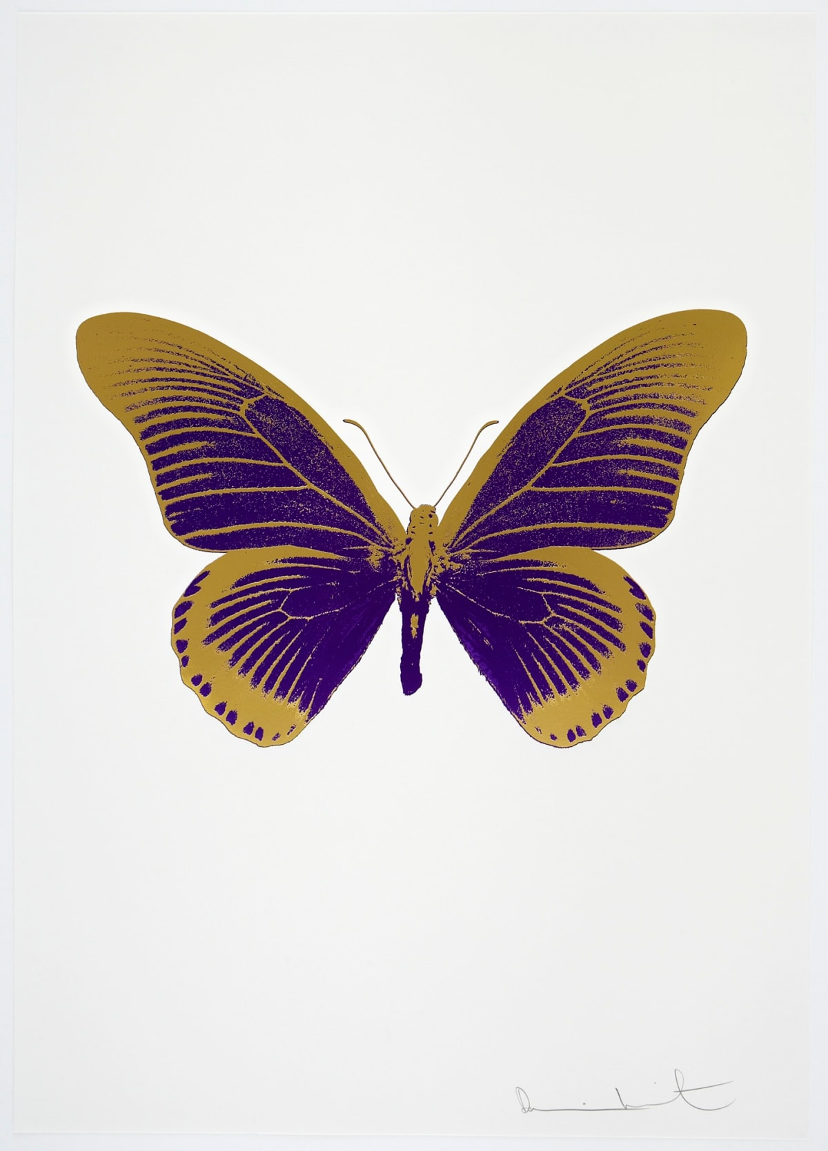 Damien Hirst The Souls IV - Imperial Purple/Oriental Gold Damien Hirst butterfly foil print for sale Damien Hirst print for sale , 2010 2 colour foil block on 300gsm Arches 88 archival paper. Signed and numbered. Published by Paul Stolper and Other Criteria 72 x 51cm OC8001 / 1418-24 Edition of 15