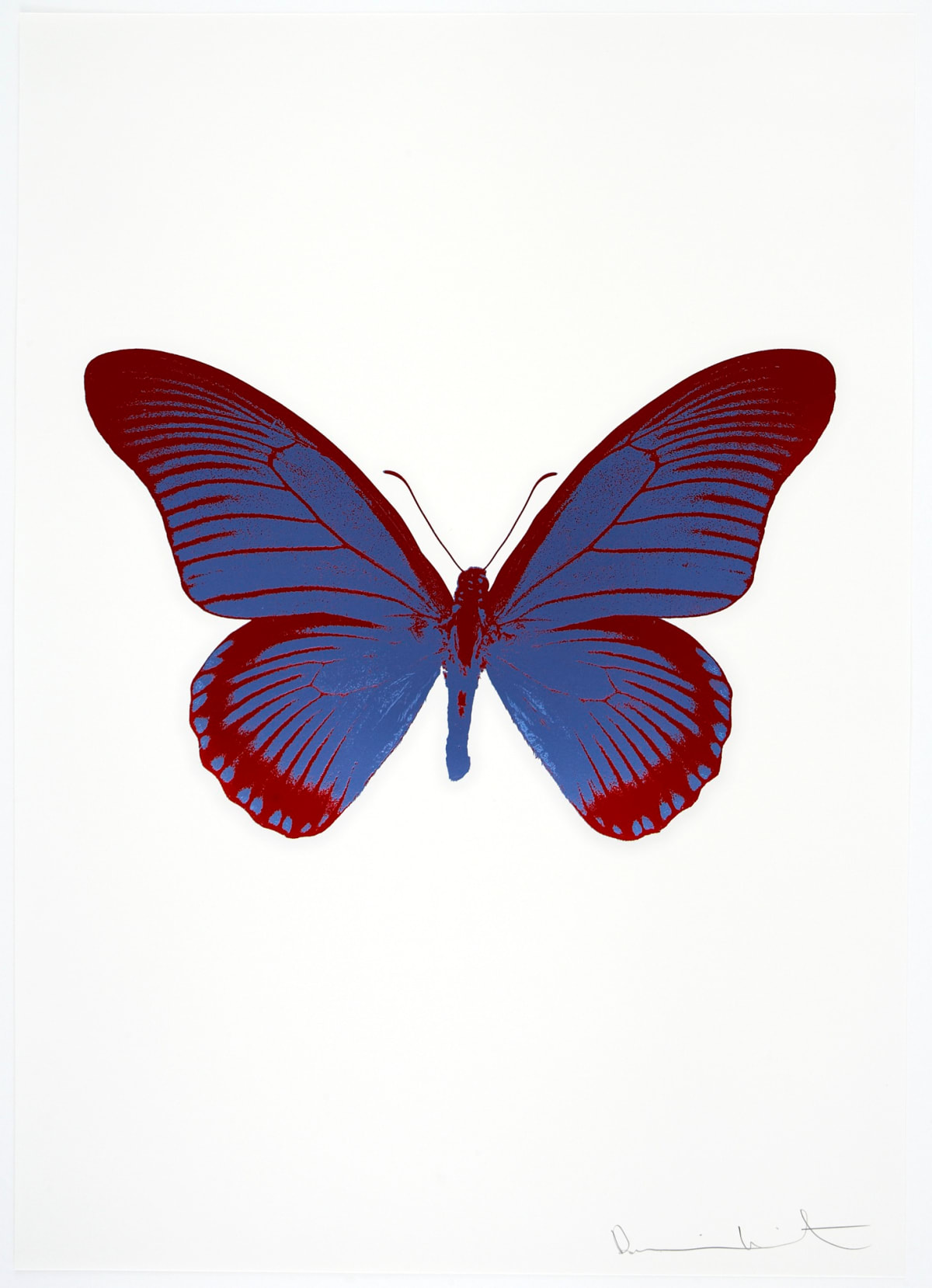 Damien Hirst The Souls IV - Frost Blue/Chilli Red, 2010 2 colour foil block on 300gsm Arches 88 archival paper. Signed and numbered. Published by Paul Stolper and Other Criteria 72 x 51cm OC8007 / 1418-3 Edition of 15