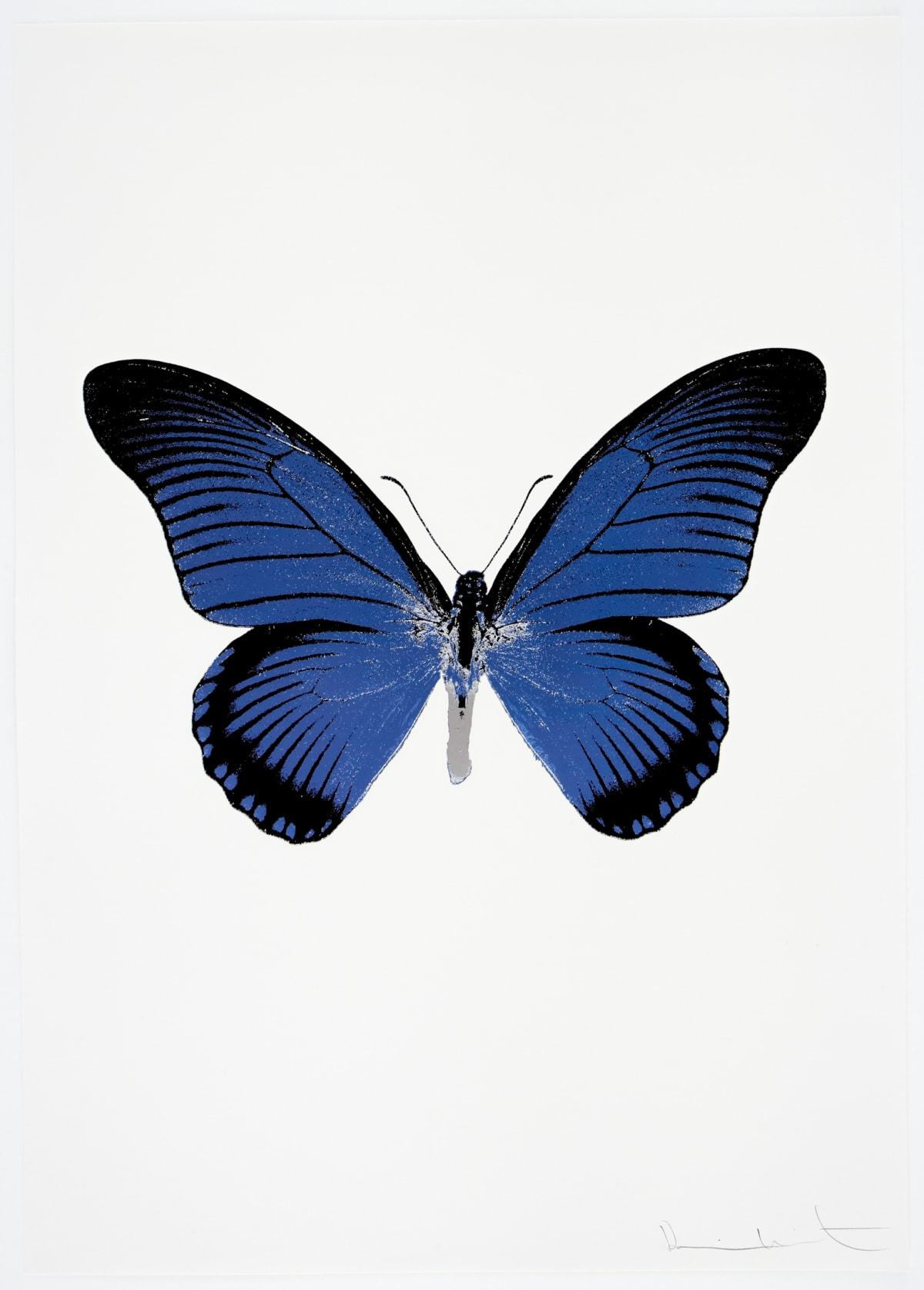 Damien Hirst The Souls IV - Frost Blue/Raven Black/Silver Gloss Damien Hirst butterfly foil print for sale Damien Hirst print for sale , 2010 3 colour foil block on 300gsm Arches 88 archival paper. Signed and numbered. Published by Paul Stolper and Other Criteria 72 x 51cm OC8030 / 1418-53 Edition of 15