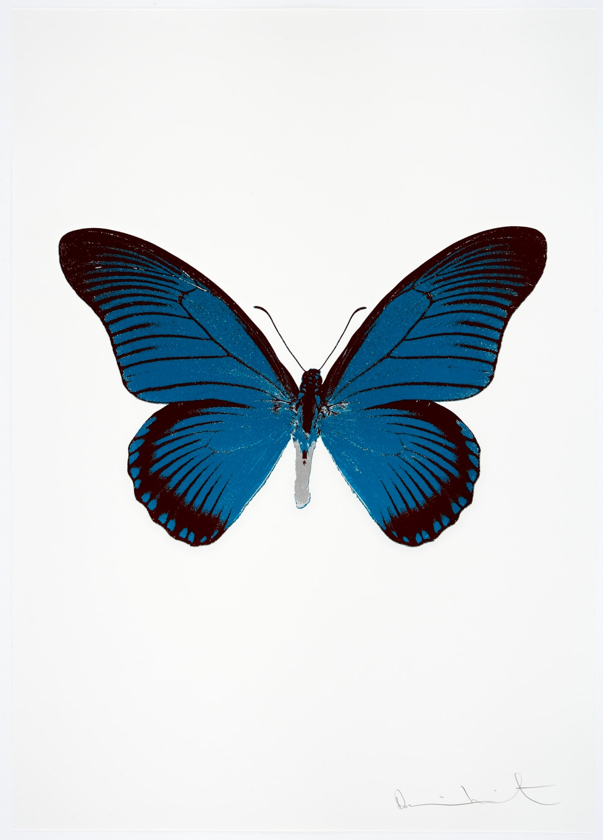 Damien Hirst The Souls IV - Turquoise/Burgundy/Silver Gloss Damien Hirst butterfly foil print for sale Damien Hirst print for sale , 2010 3 colour foil block on 300gsm Arches 88 archival paper. Signed and numbered. Published by Paul Stolper and Other Criteria 72 x 51cm OC8048 / 1418-71 Edition of 15