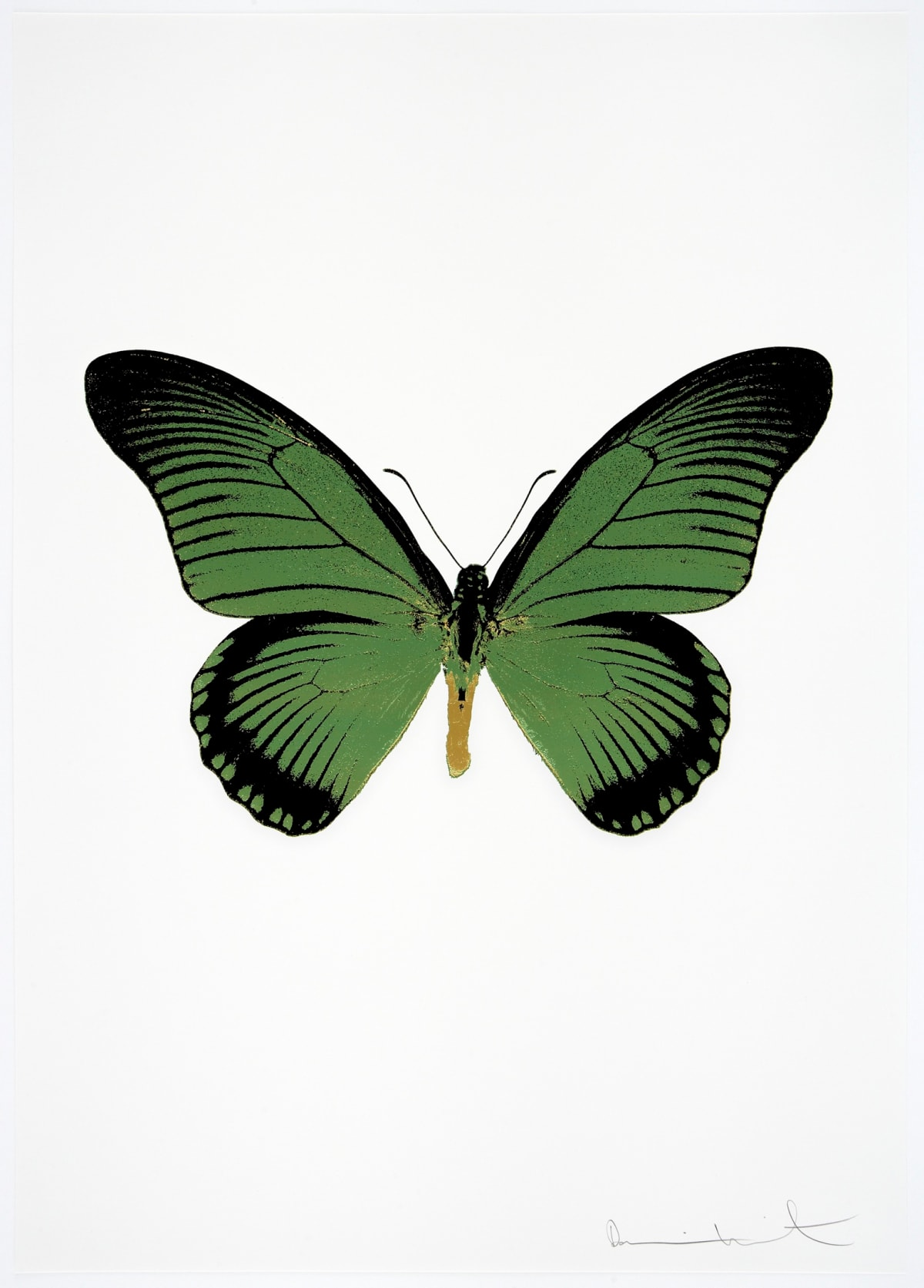Damien Hirst The Souls IV - Leaf Green/Raven Black/Oriental Gold Damien Hirst butterfly foil print for sale Damien Hirst print for sale , 2010 3 colour foil block on 300gsm Arches 88 archival paper. Signed and numbered. Published by Paul Stolper and Other Criteria 72 x 51cm OC8035 / 1418-58 Edition of 15