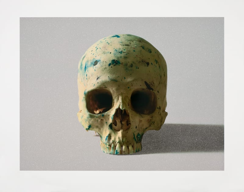 Damien Hirst Studio Half Skull, face on (with diamond dust), 2009 Silkscreen on 410gsm Somerset tub-sized, diamond dust. Edition 7 of 75, signed and numbered 88.5cm x 110cm 34.8 x 43.3 ed.7/75