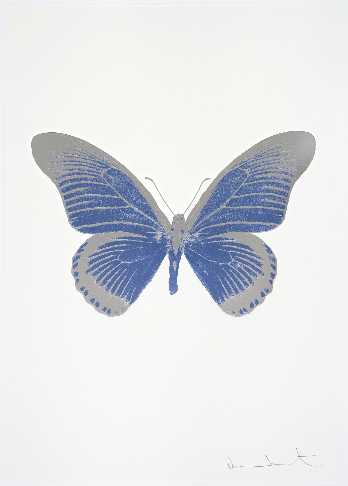 Damien Hirst The Souls IV - Cornflower Blue/Silver Gloss/Blind Impression Damien Hirst butterfly foil print for sale Damien Hirst print for sale , 2010 2 colour foil block on 300gsm Arches 88 archival paper. Signed and numbered. Published by Paul Stolper and Other Criteria 72 x 51cm OC8050 / 1418-73 Edition of 15