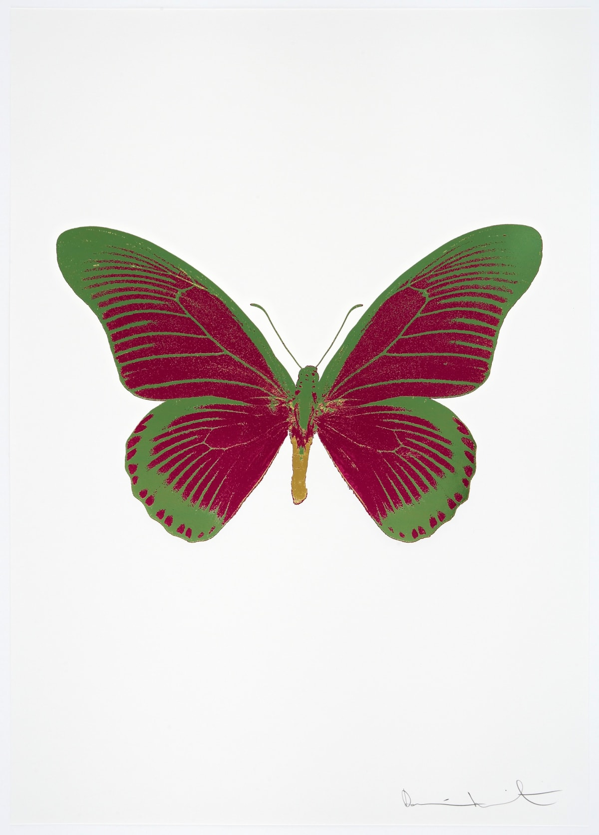 Damien Hirst The Souls IV - Fuchsia Pink/Leaf Green/Oriental Gold Damien Hirst butterfly foil print for sale Damien Hirst print for sale , 2010 3 colour foil block on 300gsm Arches 88 archival paper. Signed and numbered. Published by Paul Stolper and Other Criteria 72 x 51cm OC8057 / 1418-80 Edition of 15