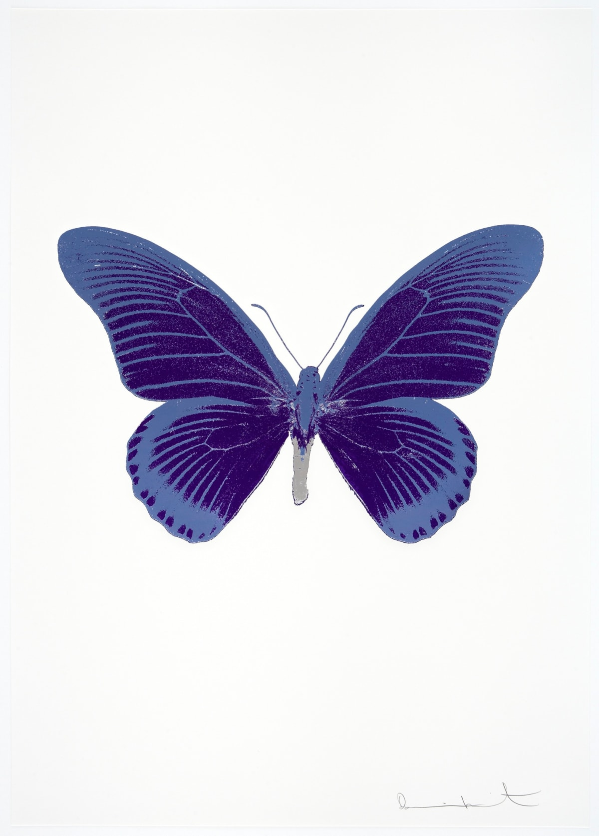 Damien Hirst The Souls IV - Imperial Purple/Cornflower Blue/Silver Gloss Damien Hirst butterfly foil print for sale Damien Hirst print for sale , 2010 3 colour foil block on 300gsm Arches 88 archival paper. Signed and numbered. Published by Paul Stolper and Other Criteria 72 x 51cm OC8040 / 1418-63 Edition of 15