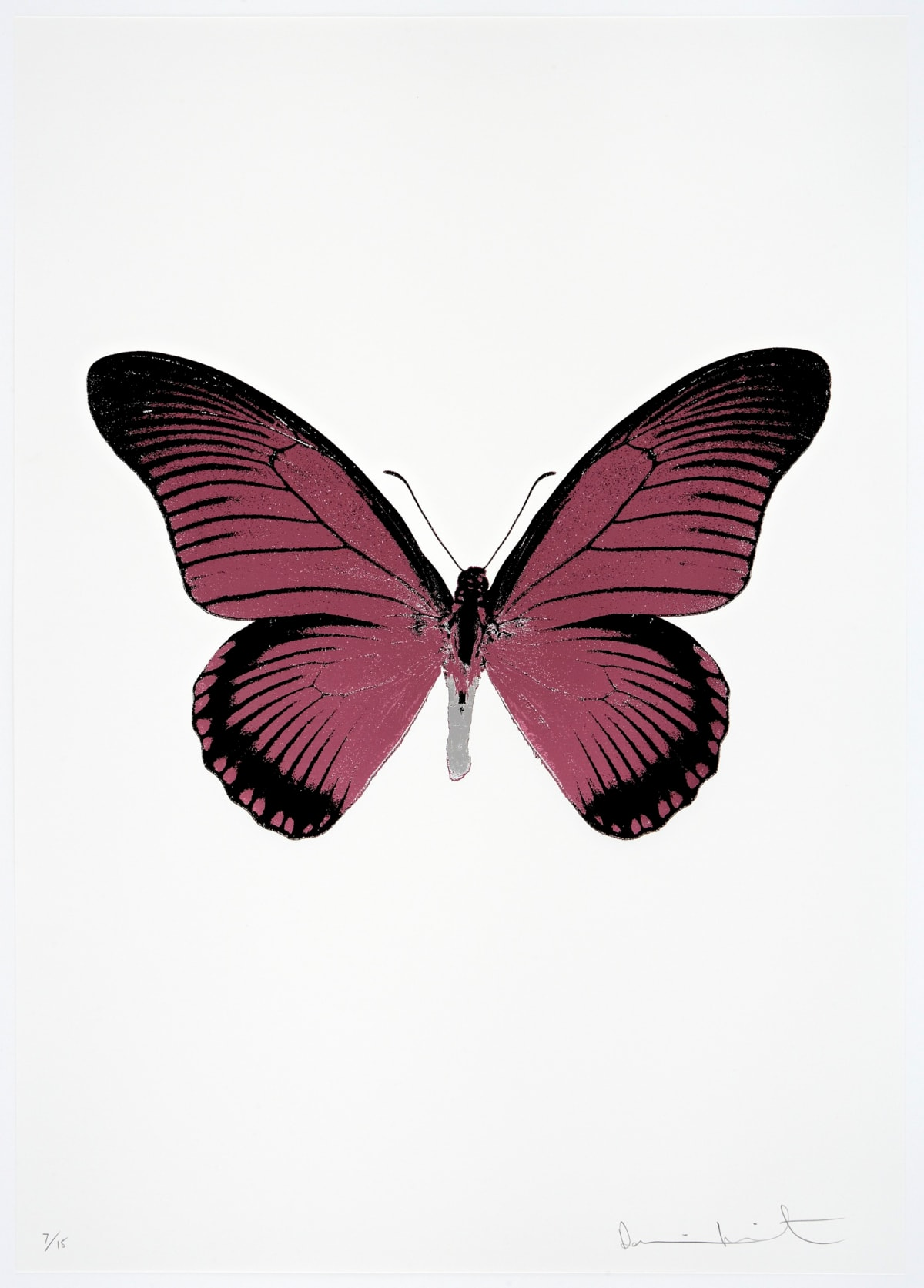 Damien Hirst The Souls IV - Loganberry Pink/Raven Black/Silver Gloss Damien Hirst butterfly foil print for sale Damien Hirst print for sale , 2010 3 colour foil block on 300gsm Arches 88 archival paper. Signed and numbered. Published by Paul Stolper and Other Criteria 72 x 51cm OC8011 / 1418-34 Edition of 15