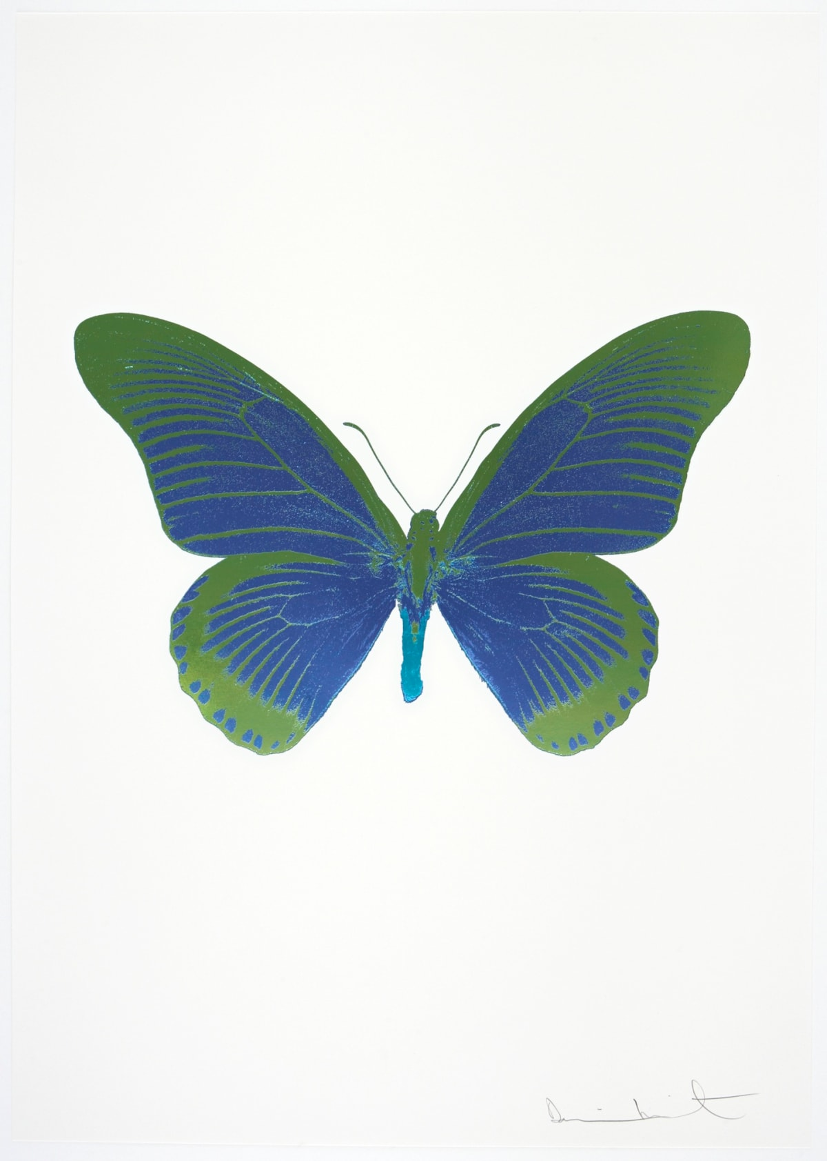 Damien Hirst The Souls IV - Frost Blue/Leaf Green/Topaz Damien Hirst butterfly foil print for sale Damien Hirst print for sale , 2010 3 colour foil block on 300gsm Arches 88 archival paper. Signed and numbered. Published by Paul Stolper and Other Criteria 72 x 51cm OC8055 / 1418-78 Edition of 15