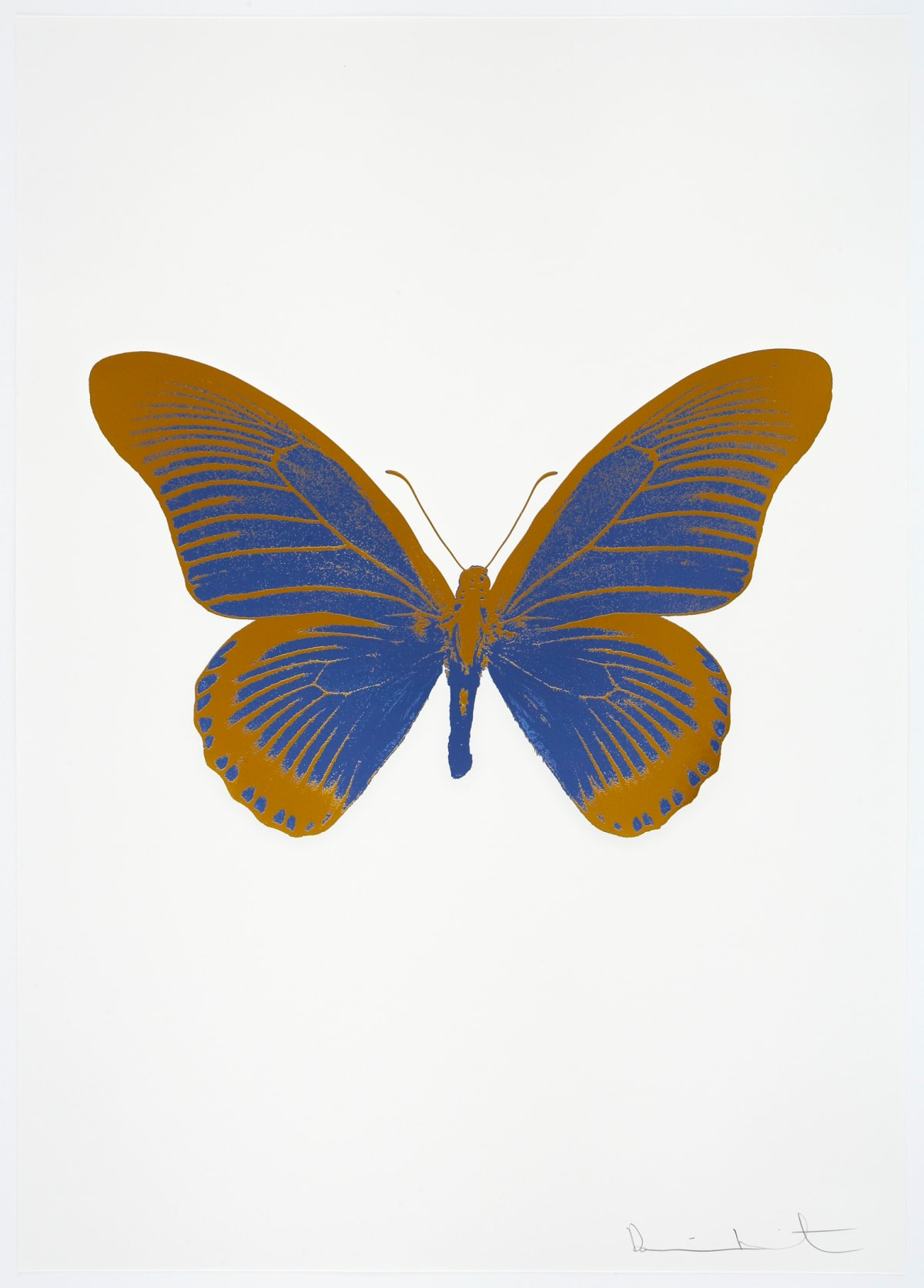 Damien Hirst The Souls IV - Frost Blue/Paradise Copper Damien Hirst butterfly foil print for sale Damien Hirst print for sale , 2010 2 colour foil block on 300gsm Arches 88 archival paper. Signed and numbered. Published by Paul Stolper and Other Criteria 72 x 51cm OC8022 / 1418-45 Edition of 15