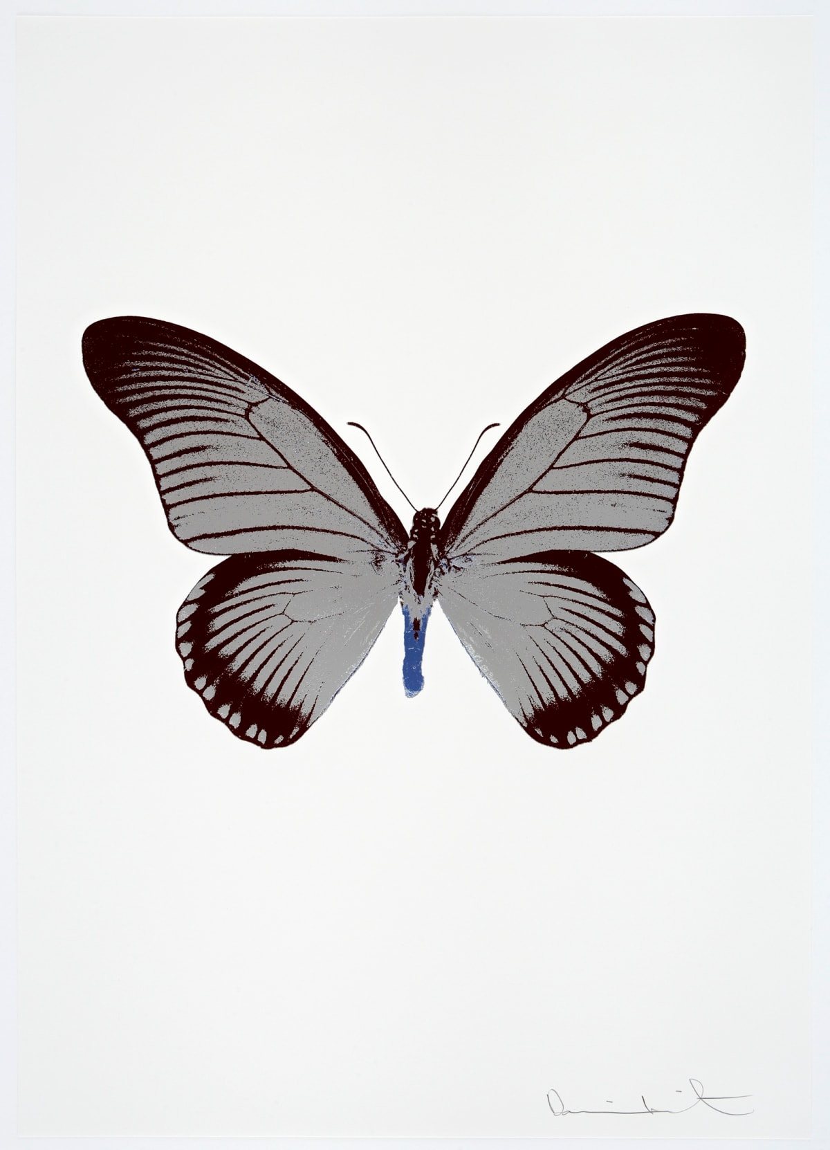 Damien Hirst The Souls IV - Silver Gloss/Burgundy/Frost Blue Damien Hirst butterfly foil print for sale Damien Hirst print for sale , 2010 3 colour foil block on 300gsm Arches 88 archival paper. Signed and numbered. Published by Paul Stolper and Other Criteria 72 x 51cm OC8020 / 1418-43 Edition of 15