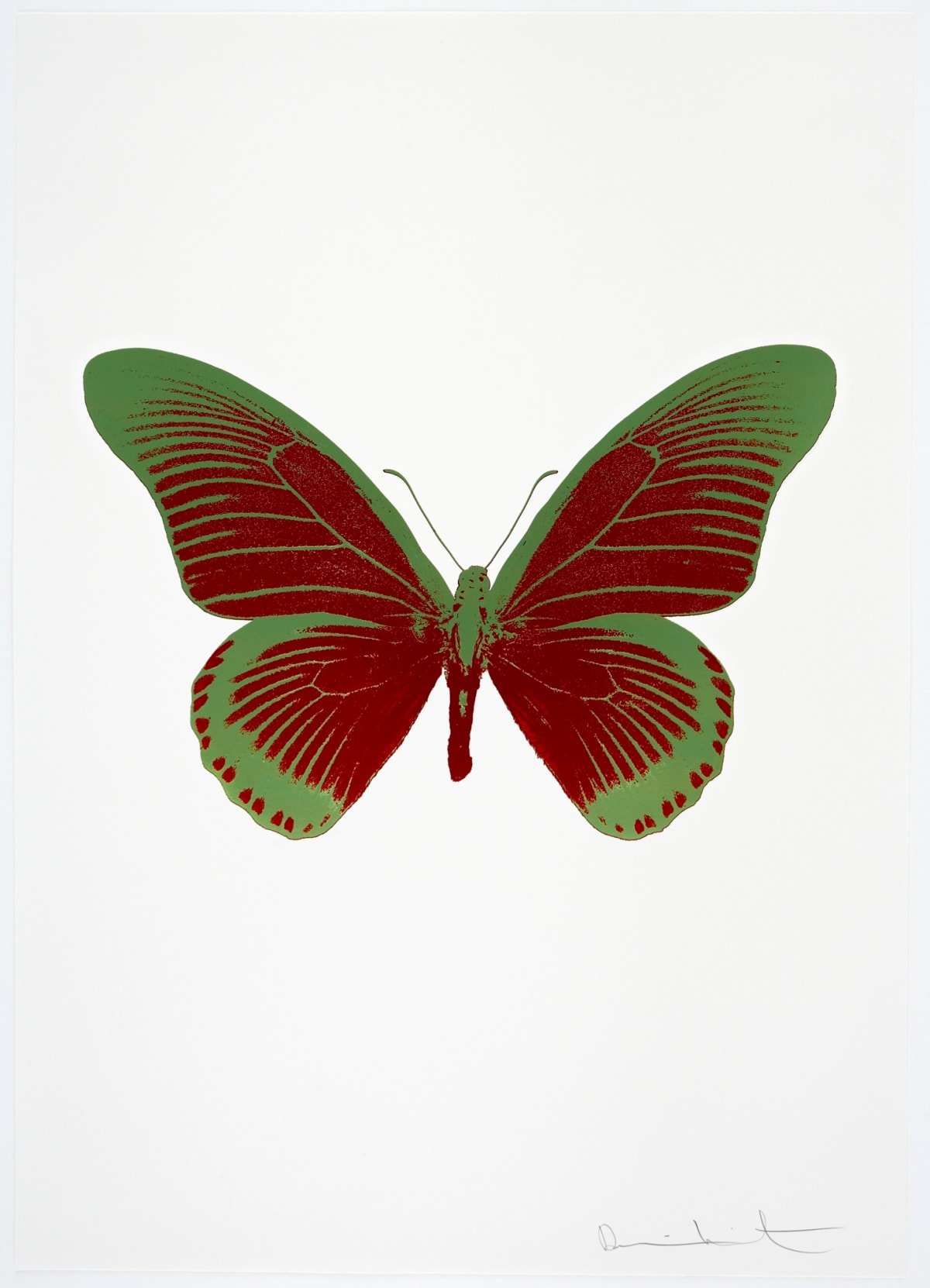 Damien Hirst The Souls IV - Chilli Red/Leaf Green Damien Hirst butterfly foil print for sale Damien Hirst print for sale , 2010 2 colour foil block on 300gsm Arches 88 archival paper. Signed and numbered. Published by Paul Stolper and Other Criteria 72 x 51cm OC8005 / 1418-28 Edition of 15