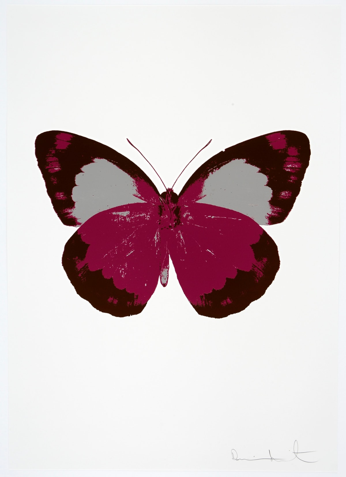 Damien Hirst The Souls II - Fuchsia Pink/Chocolate/Silver Gloss, 2010 3 colour foil block on 300gsm Arches 88 archival paper. Signed and numbered. Published by Paul Stolper and Other Criteria 72 x 51cm OC7872 / 658-55 Edition of 15