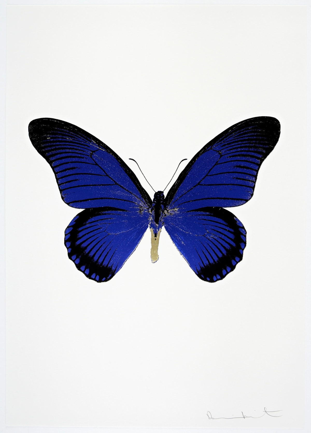 Damien Hirst The Souls IV - Westminster Blue/Raven Black/Cool Gold Damien Hirst butterfly foil print for sale Damien Hirst print for sale , 2010 3 colour foil block on 300gsm Arches 88 archival paper. Signed and numbered. Published by Paul Stolper and Other Criteria 72 x 51cm OC8044 / 1418-67 Edition of 15