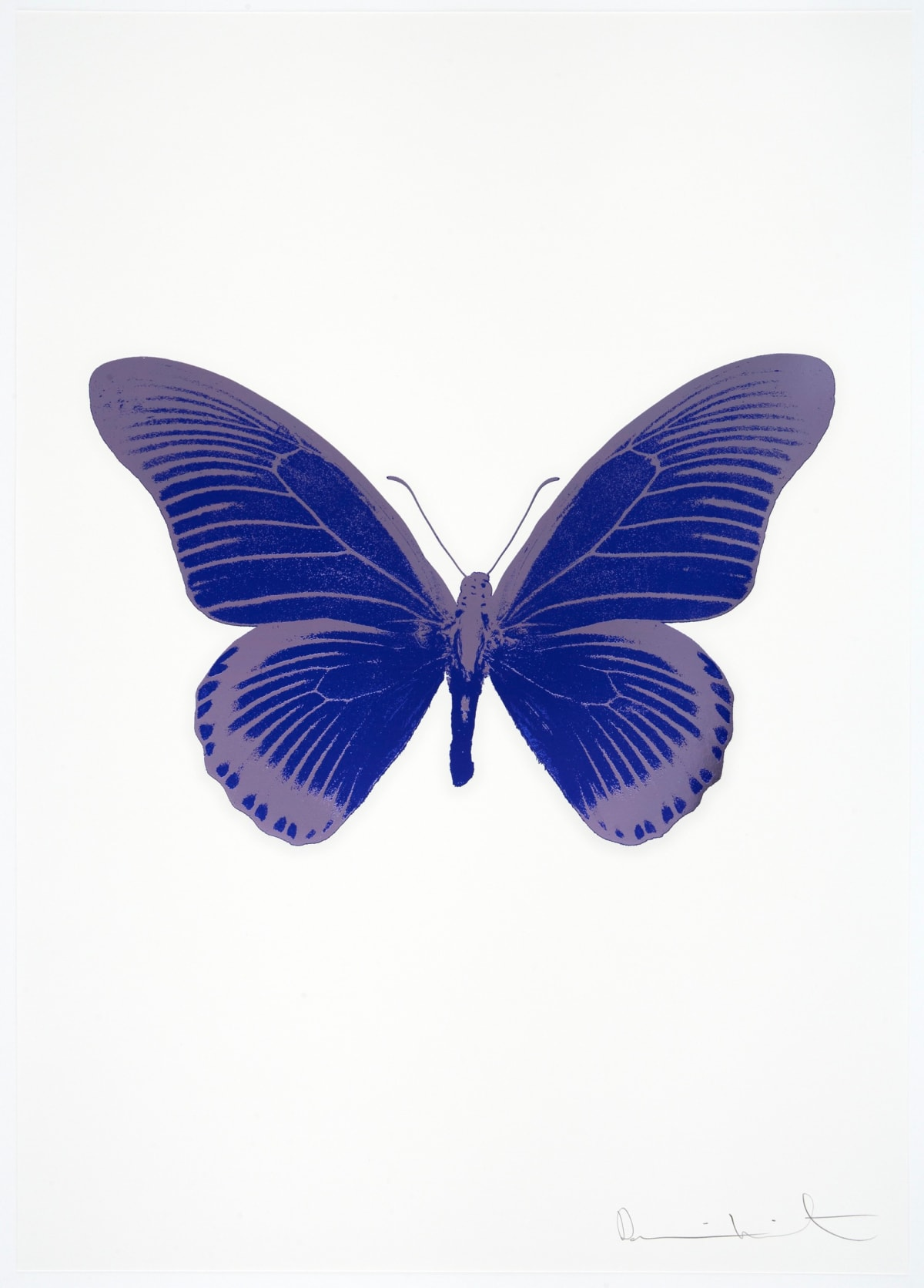 Damien Hirst The Souls IV - Westminster Blue/Aquarius Damien Hirst butterfly foil print for sale Damien Hirst print for sale , 2010 3 colour foil block on 300gsm Arches 88 archival paper. Signed and numbered. Published by Paul Stolper and Other Criteria 72 x 51cm OC7985 /1418-8 Edition of 15