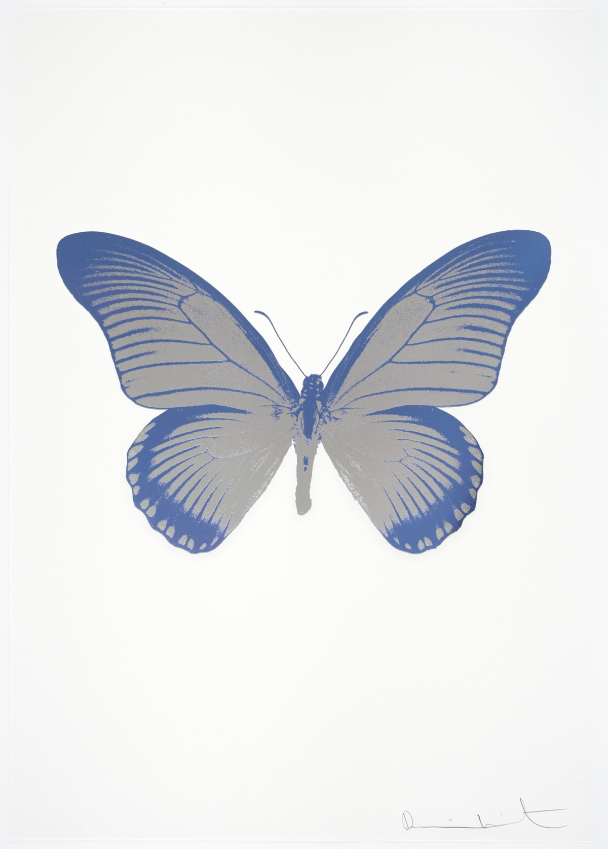 Damien Hirst The Souls IV - Silver Gloss/Cornflower Blue Damien Hirst butterfly foil print for sale Damien Hirst print for sale , 2010 2 colour foil block on 300gsm Arches 88 archival paper. Signed and numbered. Published by Paul Stolper and Other Criteria 72 x 51cm OC8043 / 1418-66 Edition of 15
