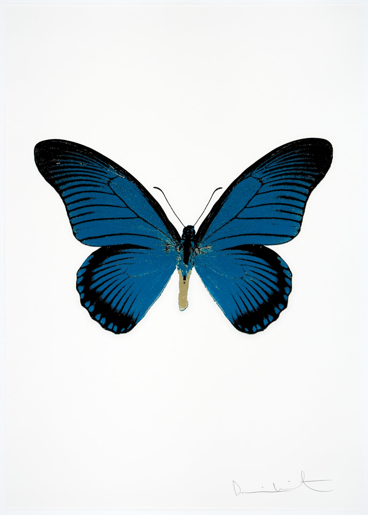 Damien Hirst The Souls IV Turquoise/Raven Black/Cool Gold Damien Hirst butterfly foil print for sale Damien Hirst print for sale , 2010 3 colour foil block on 300gsm Arches 88 archival paper. Signed and numbered. Published by Paul Stolper and Other Criteria 72 x 51cm OC8054 / 1418-77 Edition of 15