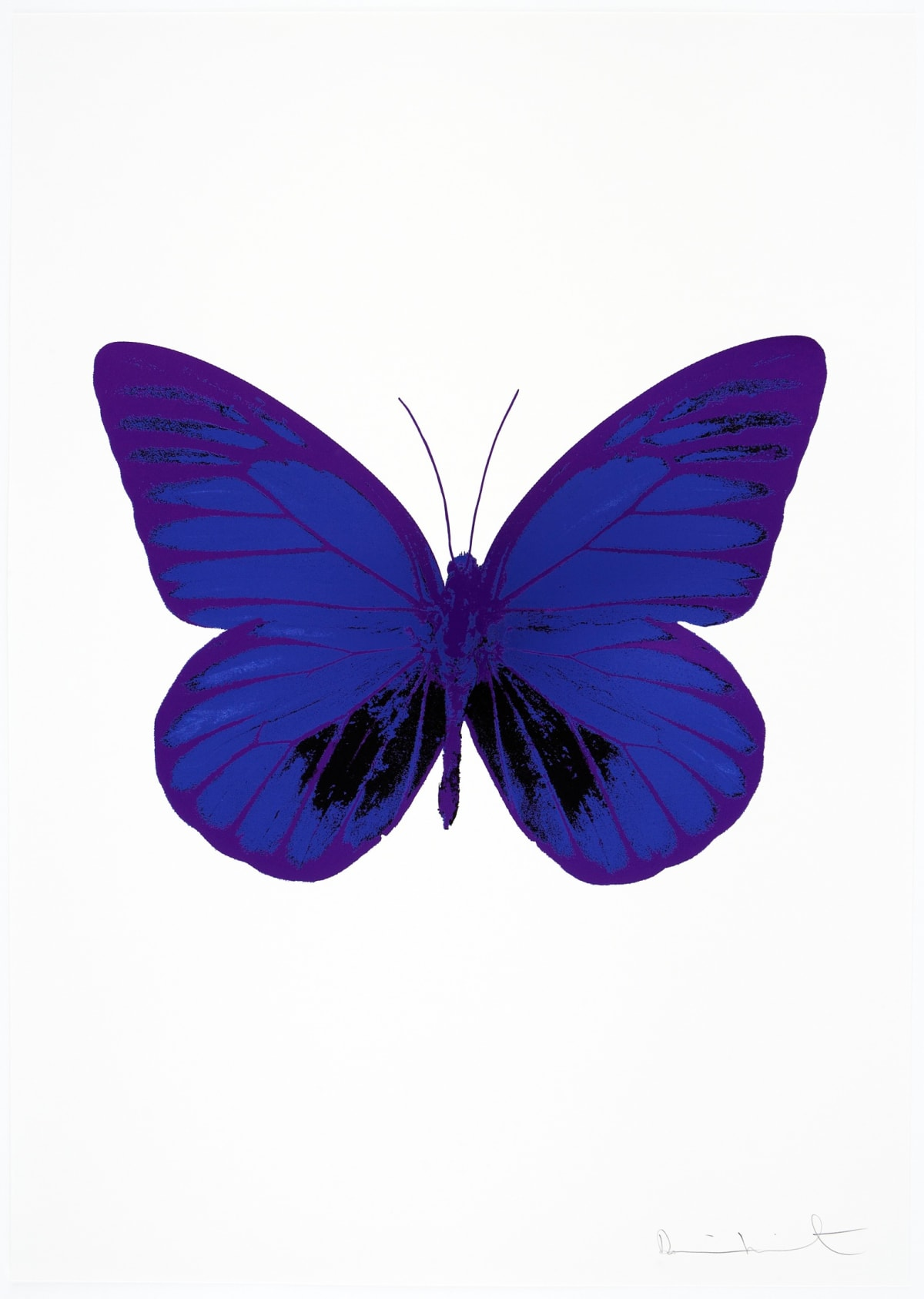Damien Hirst The Souls I - Westminster Blue/Raven Black/Imperial Purple, 2010 3 colour foil block on 300gsm Arches 88 archival paper. Signed and numbered. Published by Paul Stolper and Other Criteria 72 x 51cm OC7756 / 659-19 Edition of 15