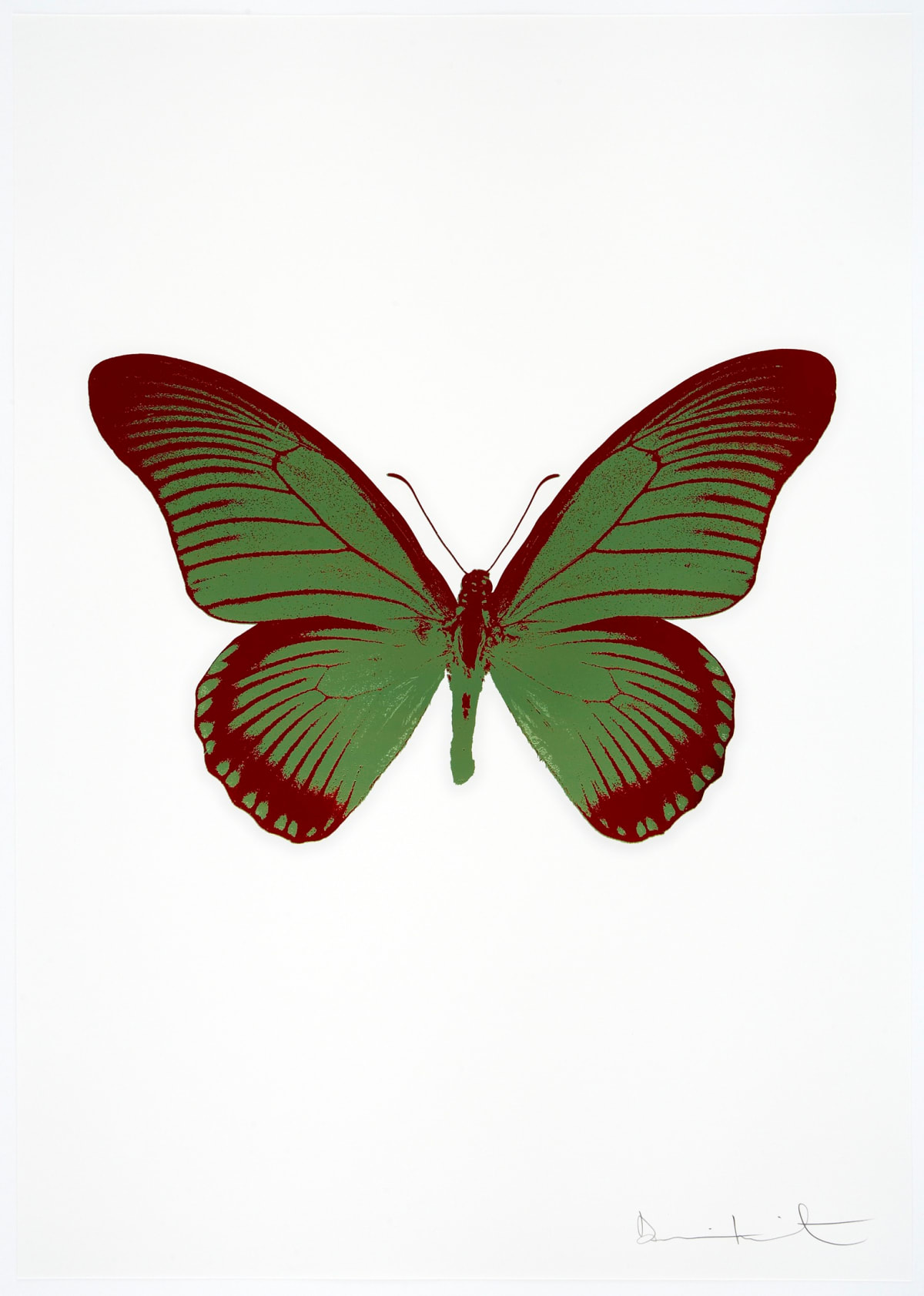 Damien Hirst The Souls IV - Leaf Green/Chilli Red Damien Hirst butterfly foil print for sale Damien Hirst print for sale , 2010 2 colour foil block on 300gsm Arches 88 archival paper. Signed and numbered. Published by Paul Stolper and Other Criteria 72 x 51cm OC8002 / 1418-25 Edition of 15