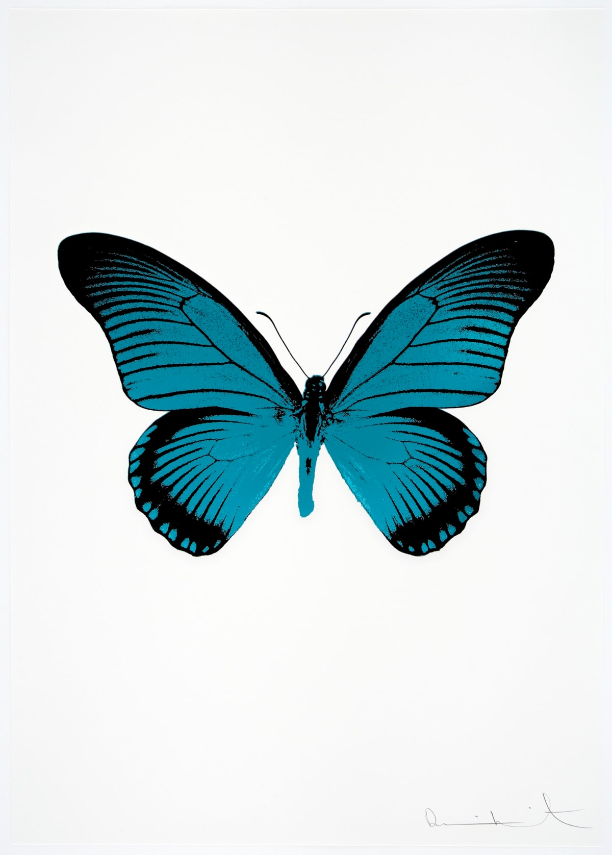 Damien Hirst The Souls IV - Topaz/Raven Black Damien Hirst butterfly foil print for sale Damien Hirst print for sale , 2010 2 colour foil block on 300gsm Arches 88 archival paper. Signed and numbered. Published by Paul Stolper and Other Criteria 72 x 51cm OC8045 / 1418-68 Edition of 15