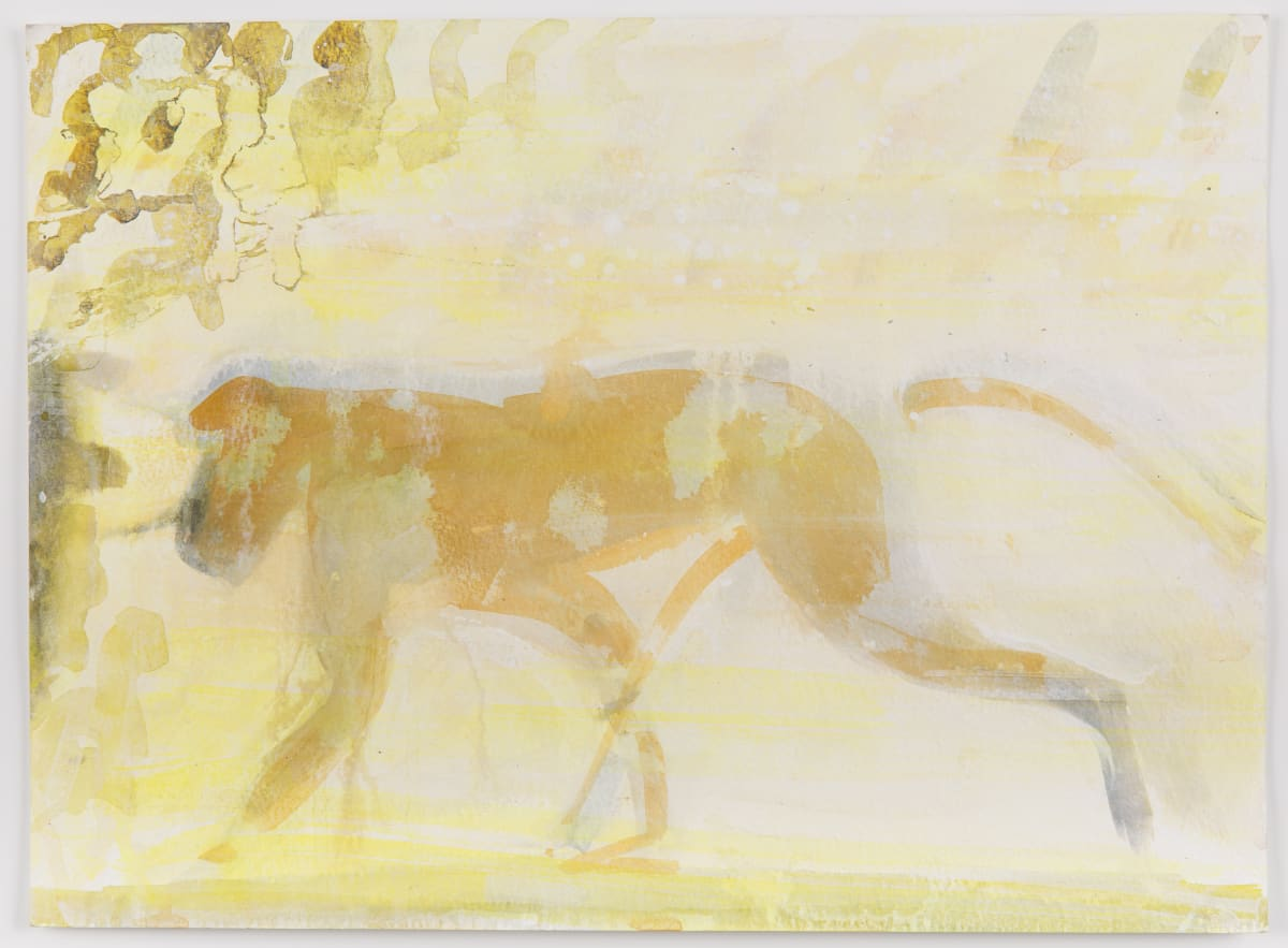 Susie Hamilton Yellow Monkey, 2003 Acrylic on paper 28 x 38 cm
