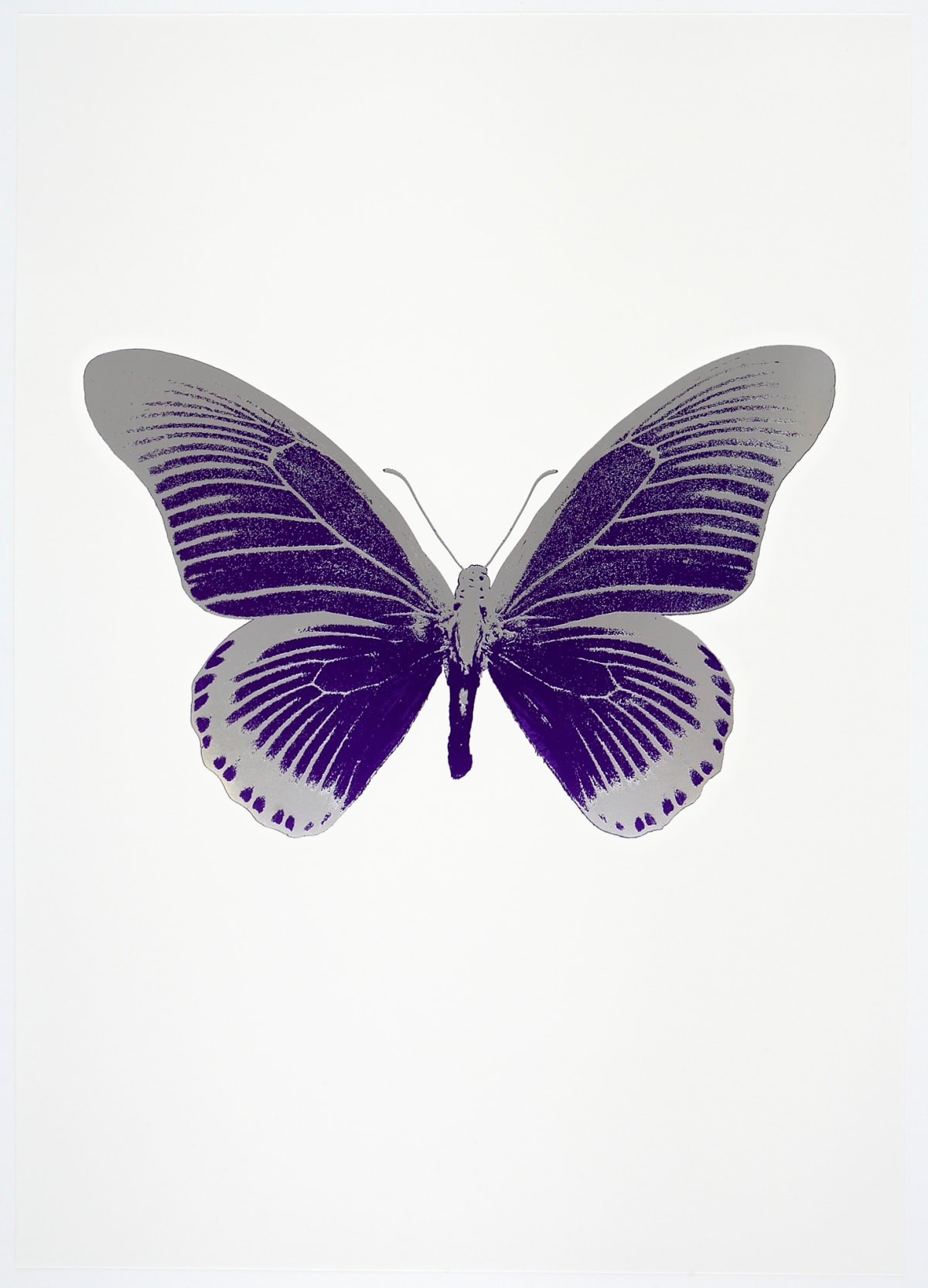 Damien Hirst The Souls IV - Imperial Purple/Silver Gloss Damien Hirst butterfly foil print for sale Damien Hirst print for sale , 2010 2 colour foil block on 300gsm Arches 88 archival paper. Signed and numbered. Published by Paul Stolper and Other Criteria 72 x 51cm OC8000 / 1418-23 Edition of 15