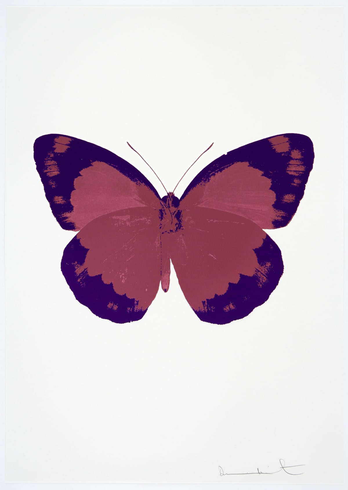 Damien Hirst The Souls II - Loganberry Pink/Imperial Purple/Blind Impression, 2010 2 colour foil block on 300gsm Arches 88 archival paper. Signed and numbered. Published by Paul Stolper and Other Criteria 72 x 51cm OC7828 / 658-11 Edition of 15