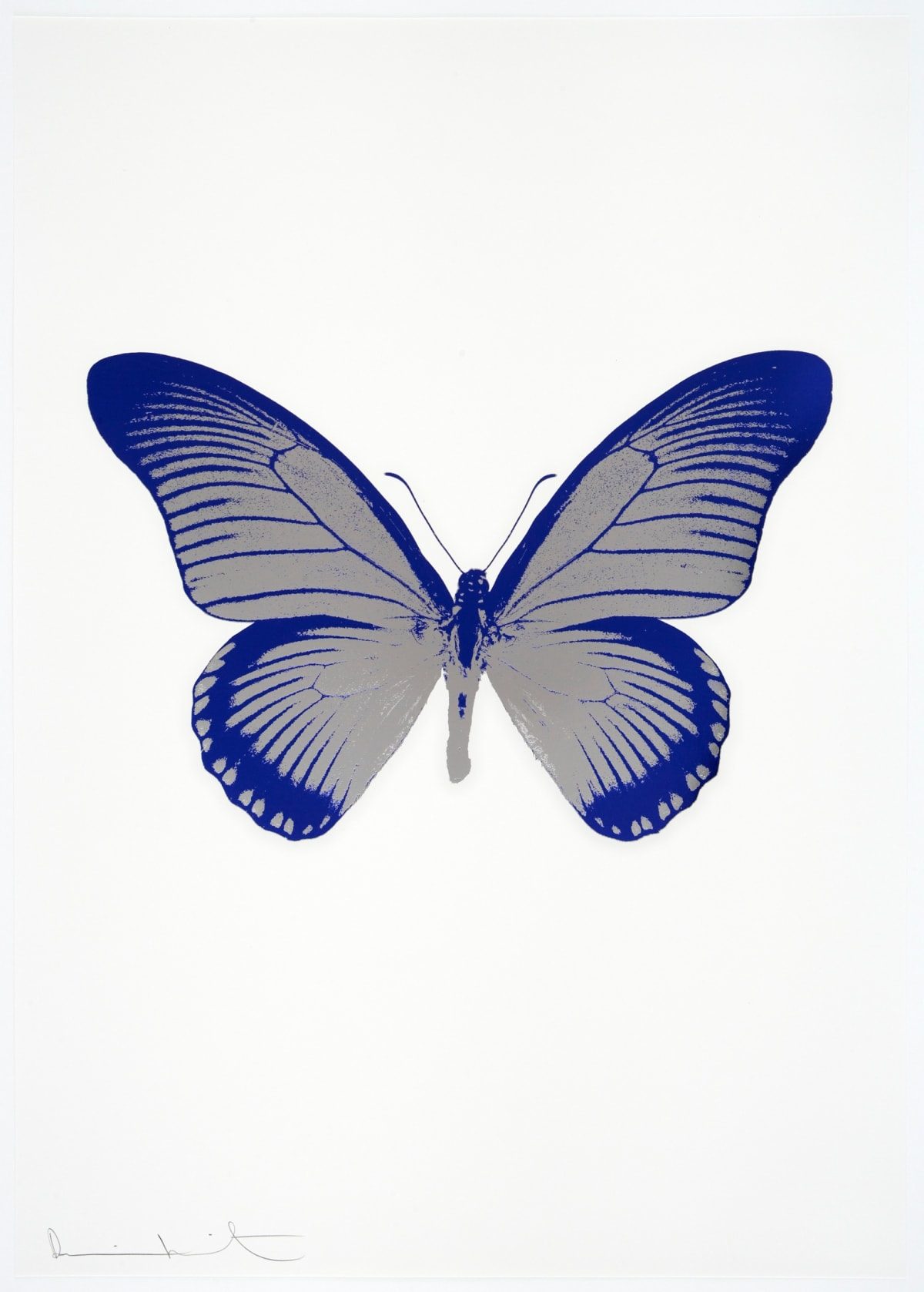 Damien Hirst The Souls IV - Silver Gloss/Westminster Blue Damien Hirst butterfly foil print for sale Damien Hirst print for sale , 2010 2 colour foil block on 300gsm Arches 88 archival paper. Signed and numbered. Published by Paul Stolper and Other Criteria 72 x 51cm OC7988 / 1418-11 Edition of 15