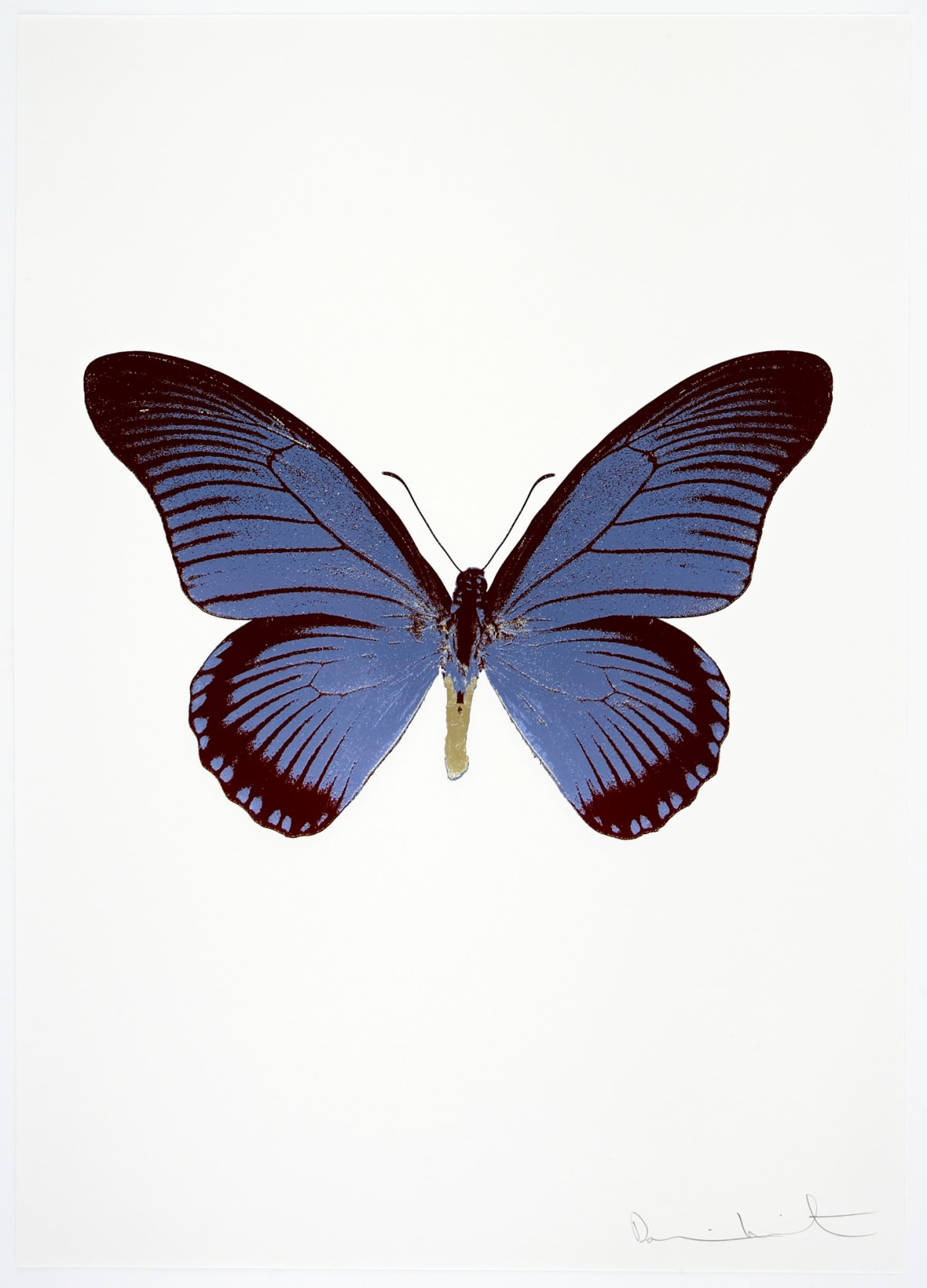 Damien Hirst The Souls IV - Cornflower Blue/Burgundy/Cool Gold Damien Hirst butterfly foil print for sale Damien Hirst print for sale , 2010 3 colour foil block on 300gsm Arches 88 archival paper. Signed and numbered. Published by Paul Stolper and Other Criteria 72 x 51cm OC8019 / 1418-42 Edition of 15