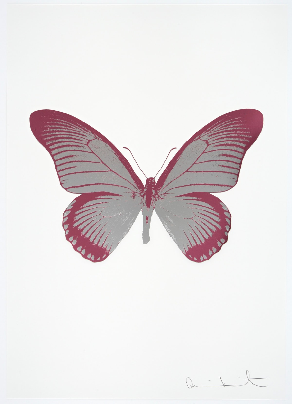 Damien Hirst The Souls IV - Silver Gloss/Loganberry Pink Damien Hirst butterfly foil print for sale Damien Hirst print for sale , 2010 2 colour foil block on 300gsm Arches 88 archival paper. Signed and numbered. Published by Paul Stolper and Other Criteria 72 x 51cm OC7990 / 1418-13 Edition of 15