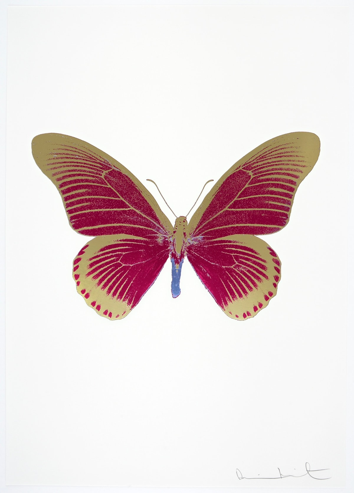 Damien Hirst The Souls IV - Fuchsia Pink/Cool Gold/Cornflower Blue Damien Hirst butterfly foil print for sale Damien Hirst print for sale , 2010 3 colour foil block on 300gsm Arches 88 archival paper. Signed and numbered. Published by Paul Stolper and Other Criteria 72 x 51cm OC8056 / 1418-79 Edition of 15