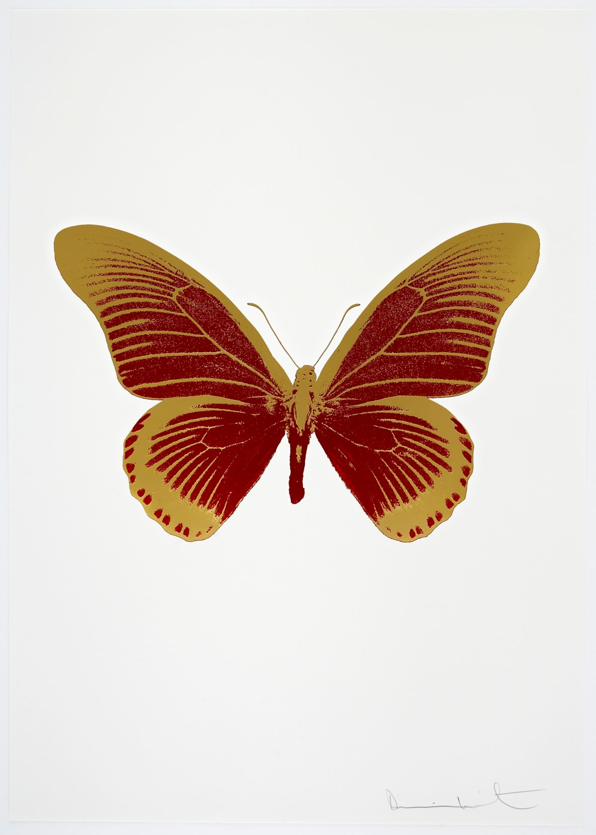 Damien Hirst The Souls IV - Chilli Red/Oriental Gold Damien Hirst butterfly foil print for sale Damien Hirst print for sale , 2010 2 colour foil block on 300gsm Arches 88 archival paper. Signed and numbered. Published by Paul Stolper and Other Criteria 72 x 51cm OC8009 / 1418-32 Edition of 15