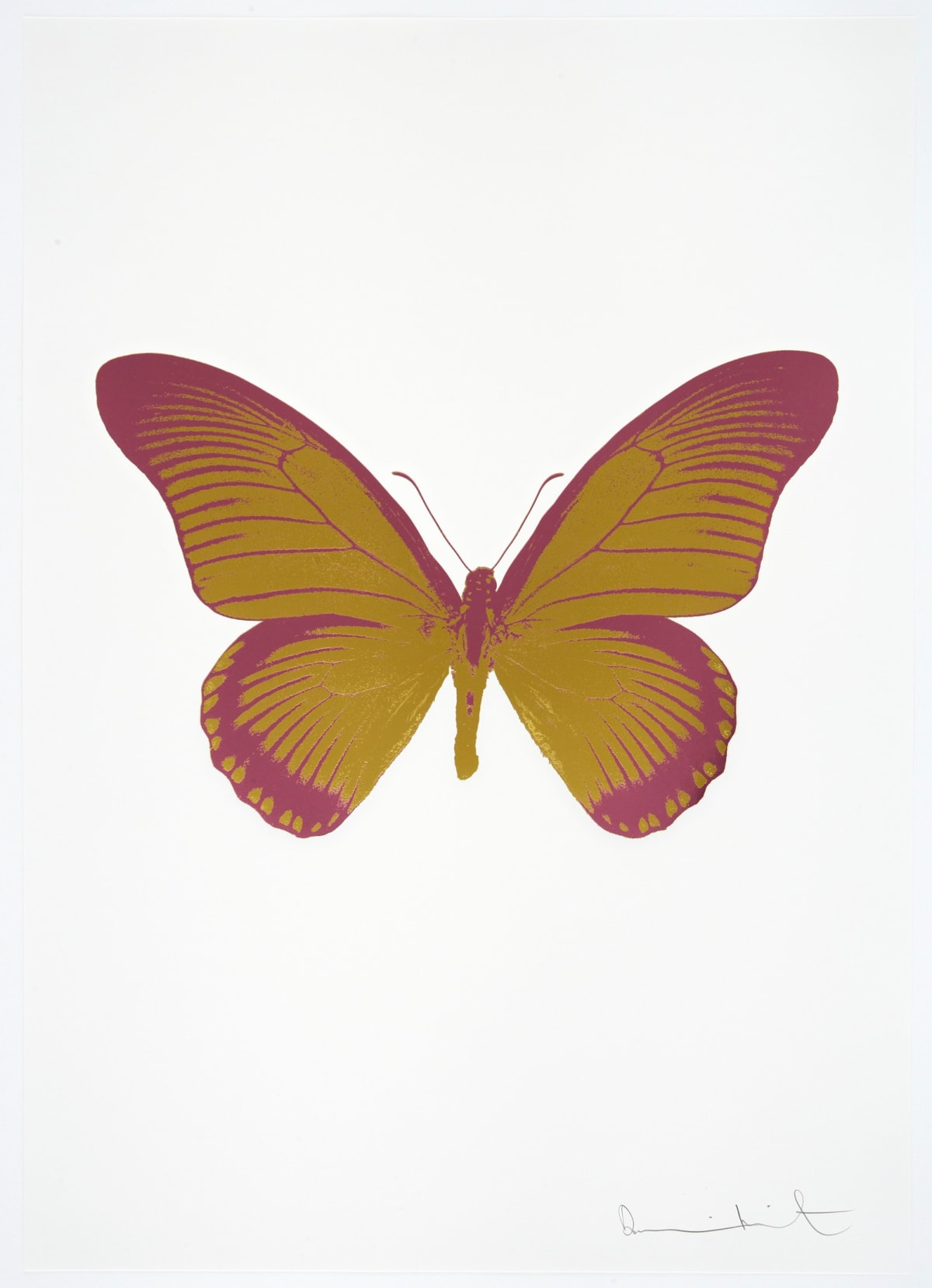 Damien Hirst The Souls IV - Oriental Gold/Loganberry Pink Damien Hirst butterfly foil print for sale Damien Hirst print for sale , 2010 2 colour foil block on 300gsm Arches 88 archival paper. Signed and numbered. Published by Paul Stolper and Other Criteria 72 x 51cm OC7994 / 1418-17 Edition of 15