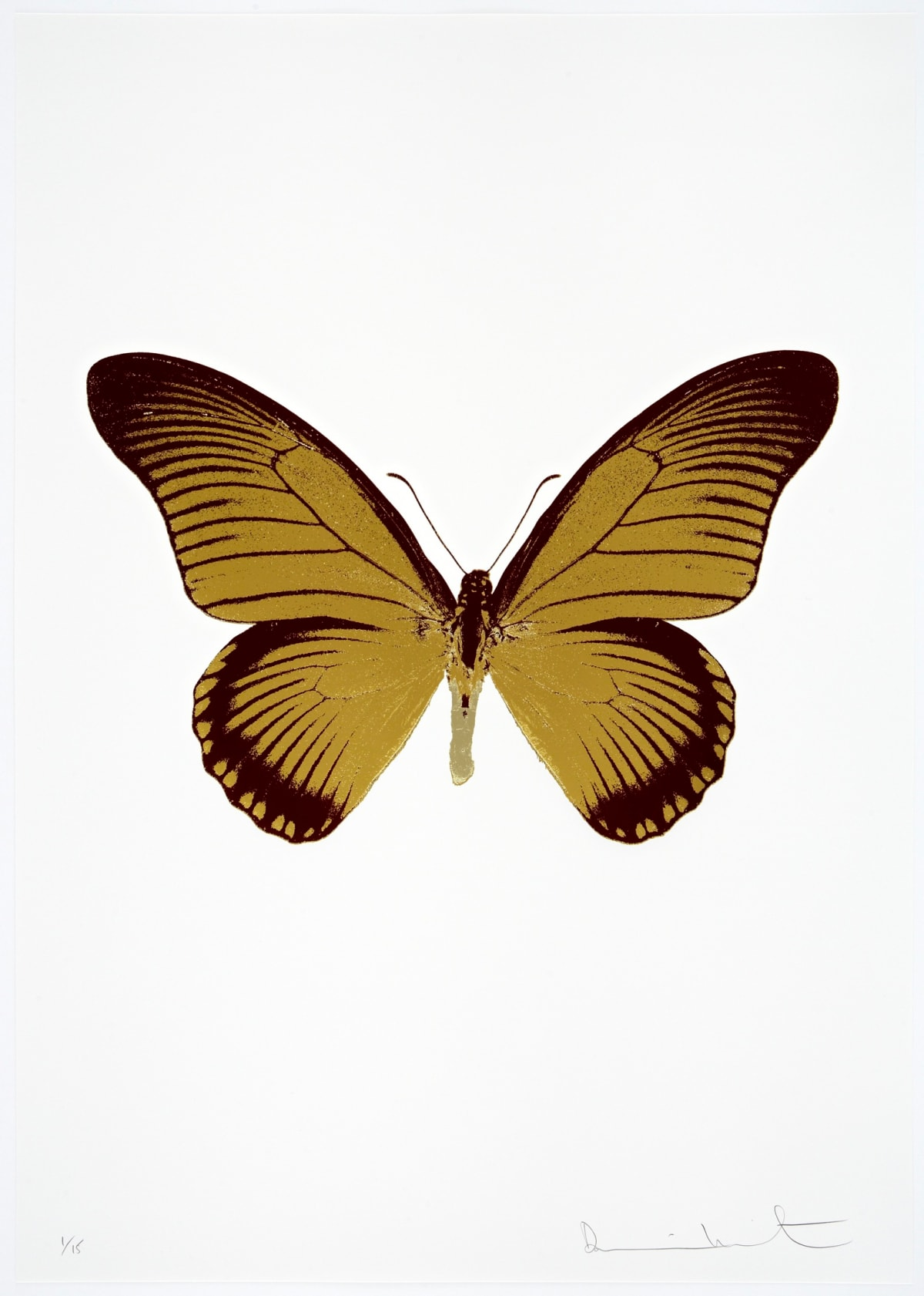 Damien Hirst The Souls IV - Oriental Gold/Burgundy/Cool Gold Damien Hirst butterfly foil print for sale Damien Hirst print for sale , 2010 3 colour foil block on 300gsm Arches 88 archival paper. Signed and numbered. Published by Paul Stolper and Other Criteria 72 x 51cm OC8036 / 1418-59 Edition of 15
