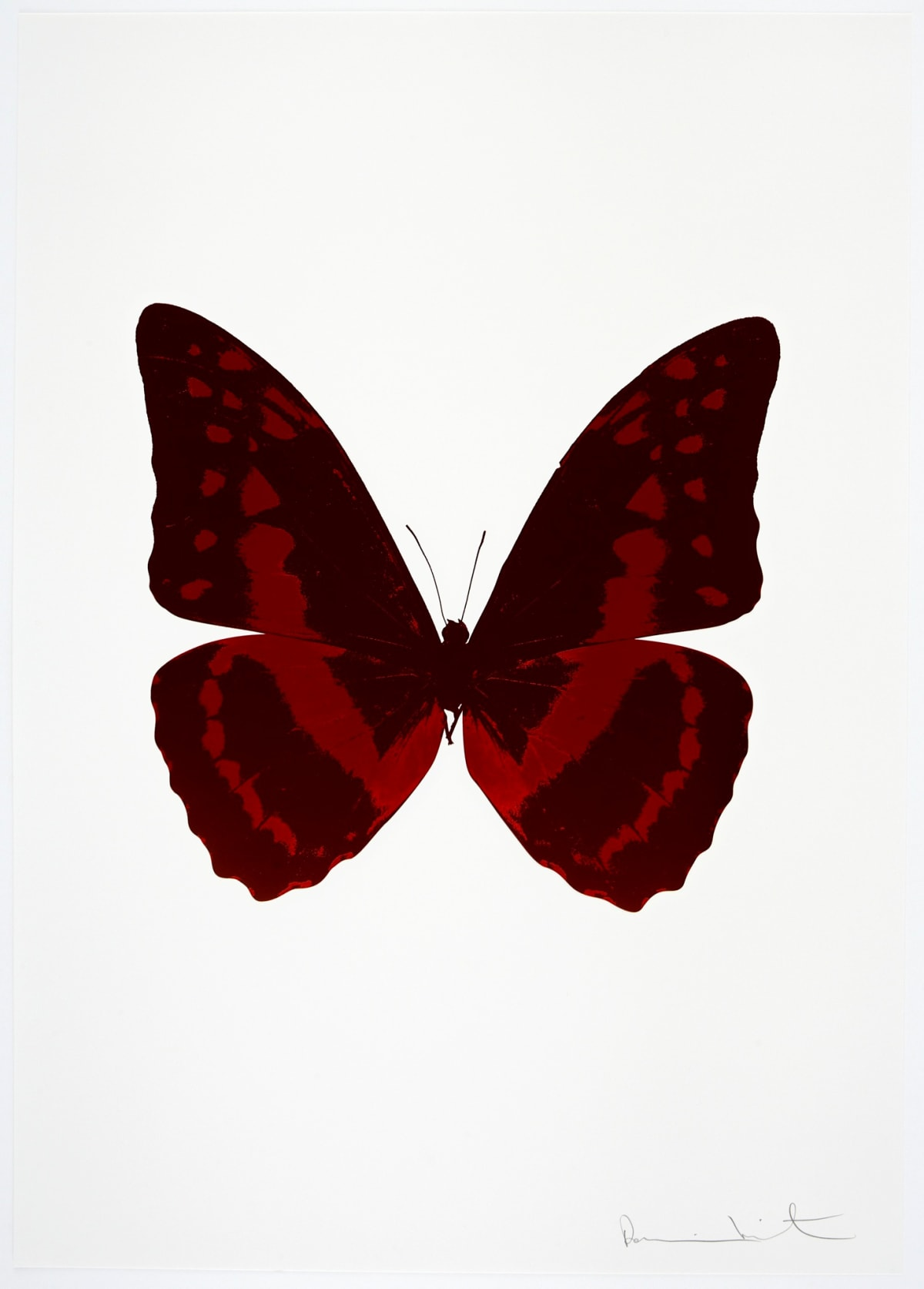 Damien Hirst The Souls III - Burgundy/Chilli Red, 2010 2 colour foil block on 300gsm Arches 88 archival paper. Signed and numbered. Published by Paul Stolper and Other Criteria 72 x 51cm OC7929 / 660-32 Edition of 15