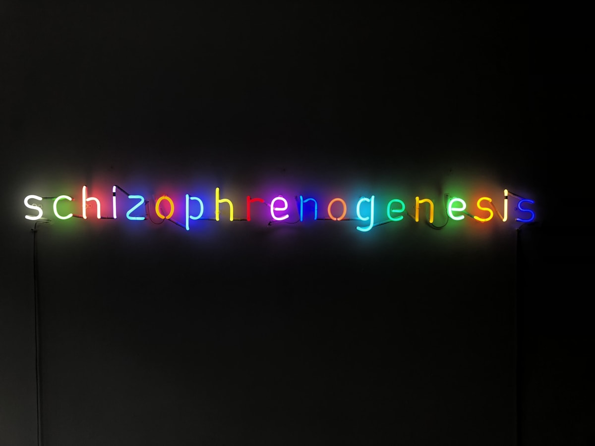 Damien Hirst Schizophrenogenesis Neon. 2014. OC10018 / DHS18320 L 172 x W 15 x D 30 cm Edition of 12