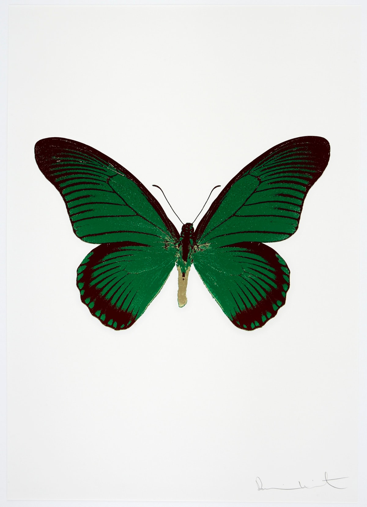 Damien Hirst The Souls IV - Emerald Green/Burgundy/Cool Gold Damien Hirst butterfly foil print for sale Damien Hirst print for sale , 2010 3 colour foil block on 300gsm Arches 88 archival paper. Signed and numbered. Published by Paul Stolper and Other Criteria 72 x 51cm OC8021 / 1418-44 Edition of 15