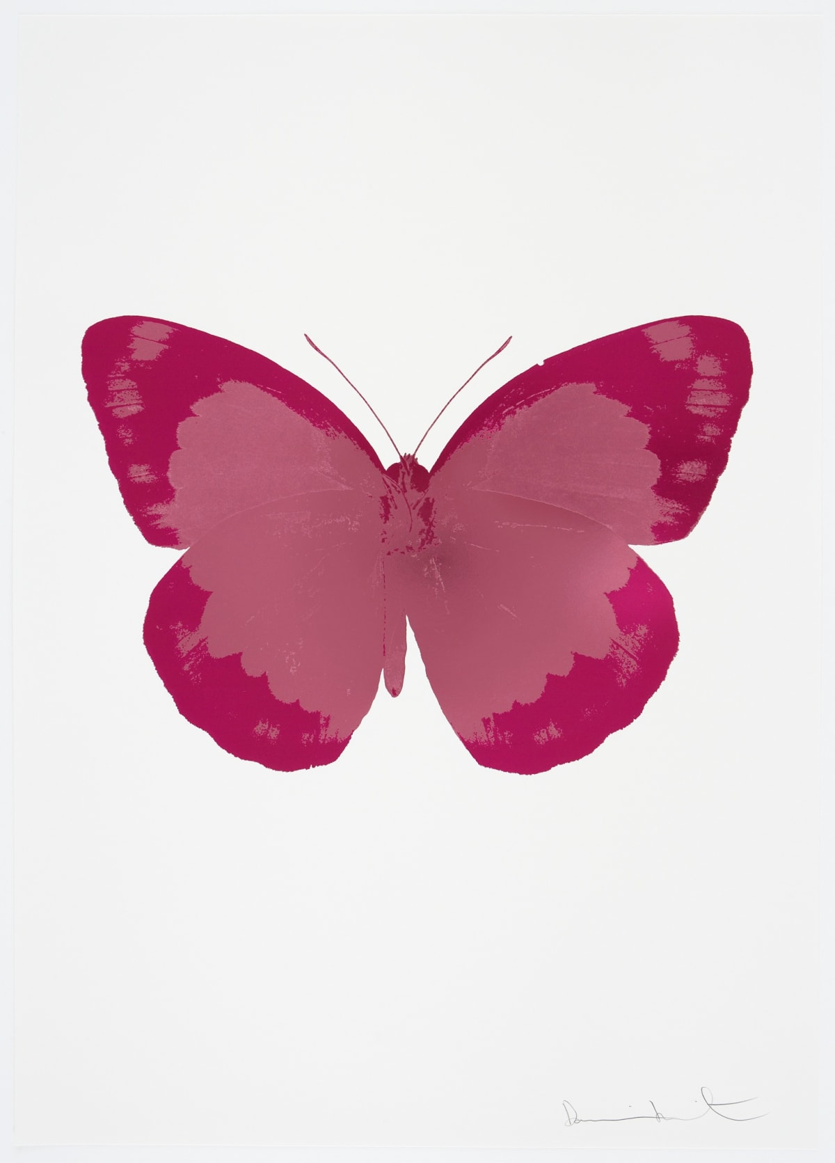 Damien Hirst The Souls II - Loganberry Pink/Fuchsia Pink/Blind Impression, 2010 2 colour foil block on 300gsm Arches 88 archival paper. Signed and numbered. Published by Paul Stolper and Other Criteria 72 x 51cm OC7840 / 658-23 Edition of 15