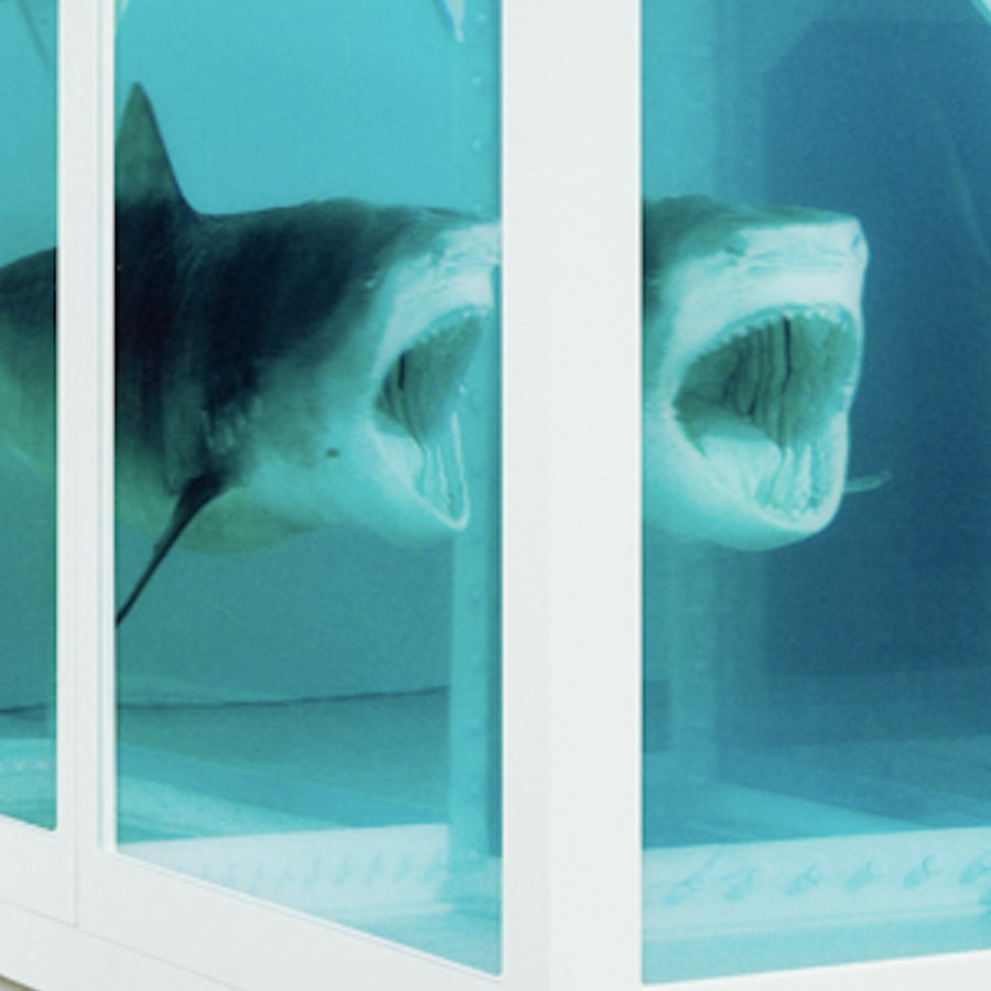 Damien Hirst - Other Works