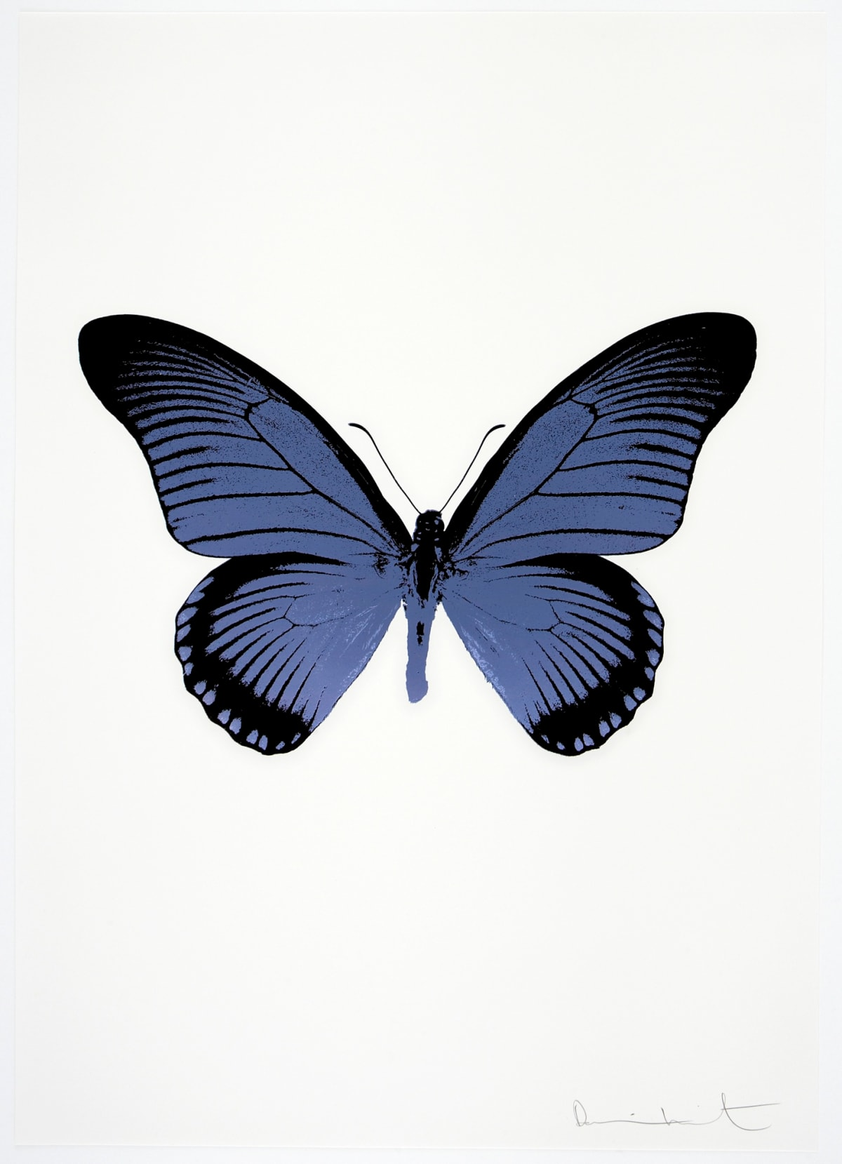 Damien Hirst The Souls IV - Cornflower Blue/Raven Black Damien Hirst butterfly foil print for sale Damien Hirst print for sale , 2010 2 colour foil block on 300gsm Arches 88 archival paper. Signed and numbered. Published by Paul Stolper and Other Criteria 72 x 51cm OC8016 / 1418-39 Edition of 15