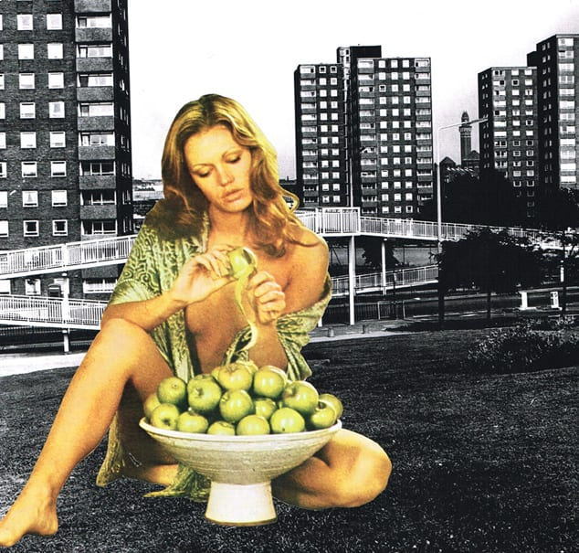 Sarah Hardacre One bad apple spoils the bunch, 2012 Collage: magazine cutting, xerographic print. Signed, titled and dated Framed Image Size: 28 x 28 cm Framed: 34 x 34 cm