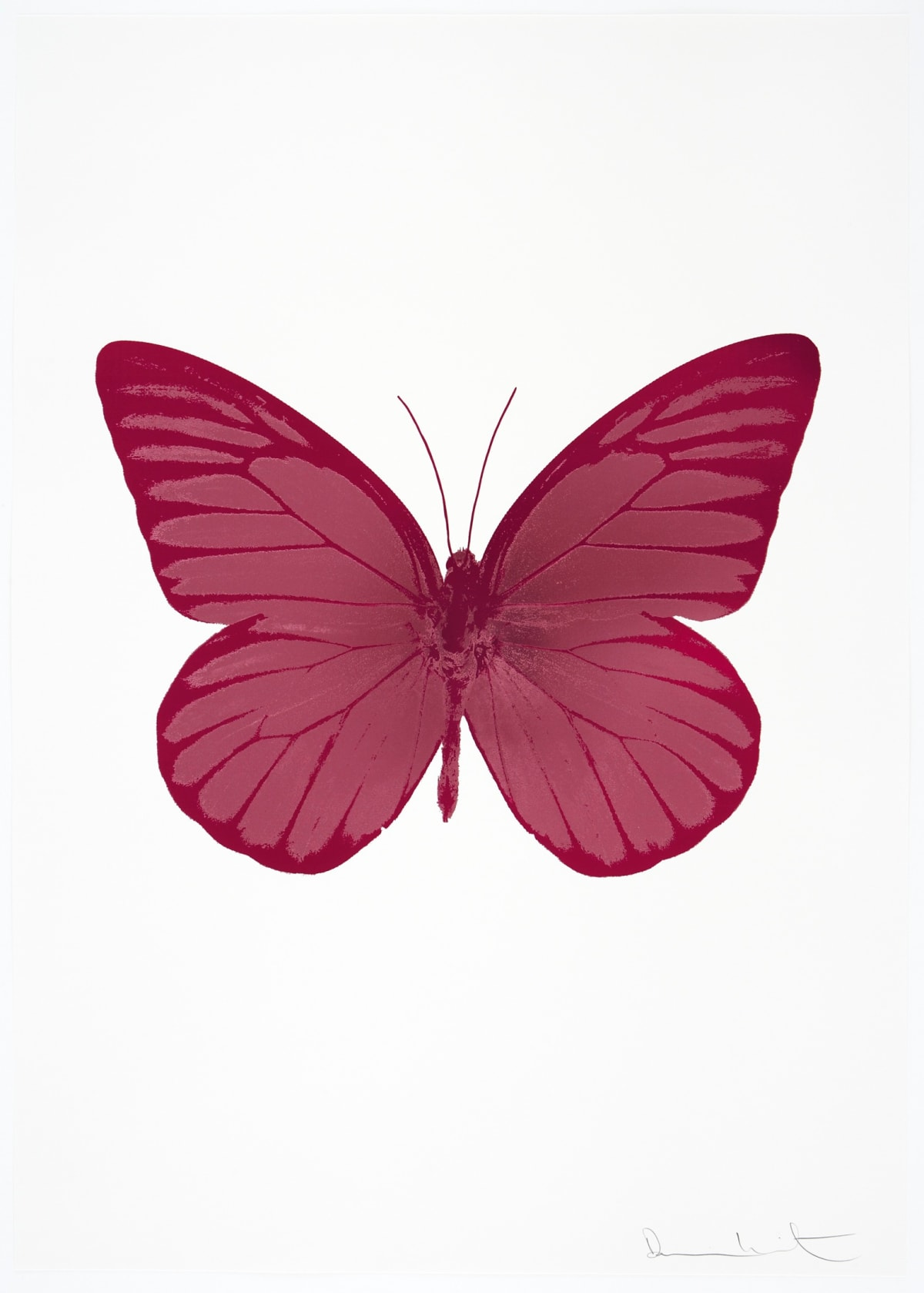 Damien Hirst The Souls I - Loganberry Pink/Blind Impression/Fuchsia Pink, 2010 2 colour foil block on 300gsm Arches 88 archival paper. Signed and numbered. Published by Paul Stolper and Other Criteria 72 x 51cm OC7784 / 659-47 Edition of 15