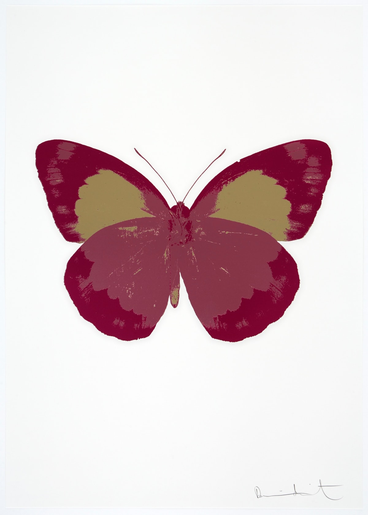 Damien Hirst The Souls II - Loganberry Pink/Fuchsia Pink/Cool Gold, 2010 3 colour foil block on 300gsm Arches 88 archival paper. Signed and numbered. Published by Paul Stolper and Other Criteria 72 x 51cm OC7877 / 658-60 Edition of 15