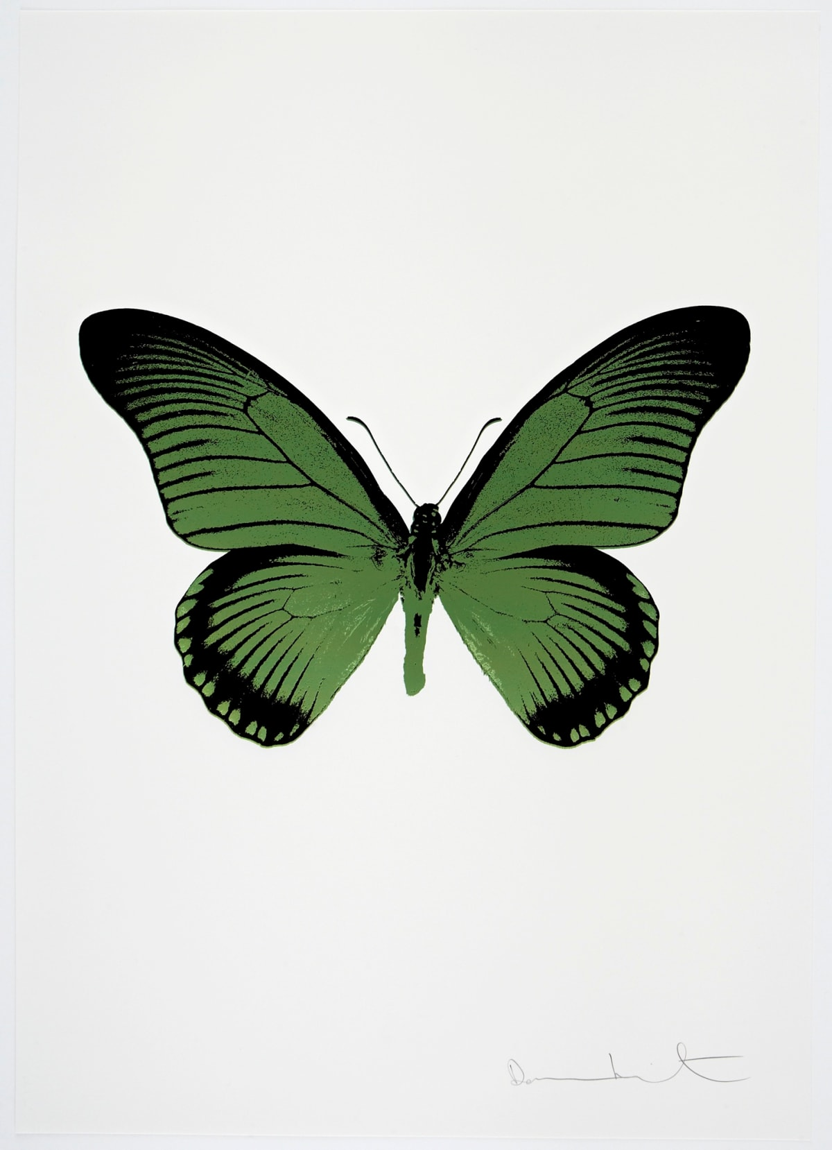 Damien Hirst The Souls IV - Leaf Green/Raven Black Damien Hirst butterfly foil print for sale Damien Hirst print for sale , 2010 2 colour foil block on 300gsm Arches 88 archival paper. Signed and numbered. Published by Paul Stolper and Other Criteria 72 x 51cm OC7979 / 1418-2 Edition of 15