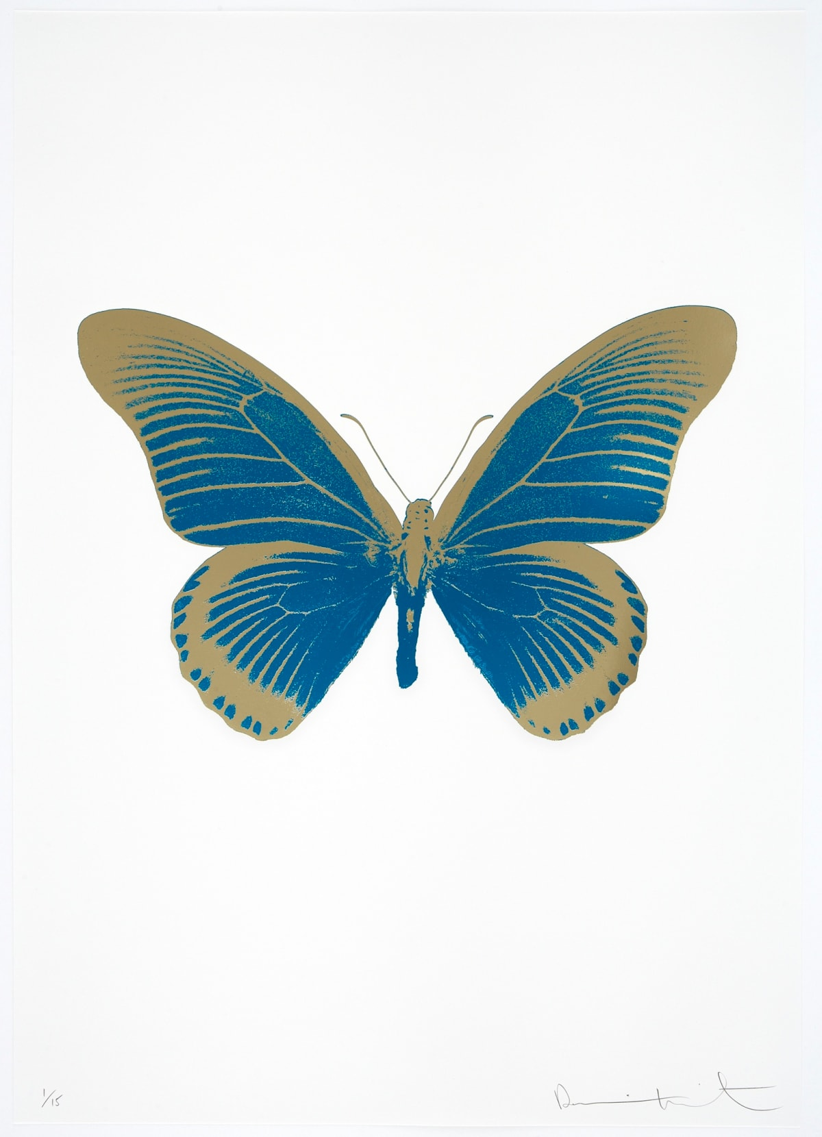 Damien Hirst The Souls IV - Turquoise/Cool Gold Damien Hirst butterfly foil print for sale Damien Hirst print for sale , 2010 2 colour foil block on 300gsm Arches 88 archival paper. Signed and numbered. Published by Paul Stolper and Other Criteria 72 x 51cm OC8014 / 1418-37 Edition of 15