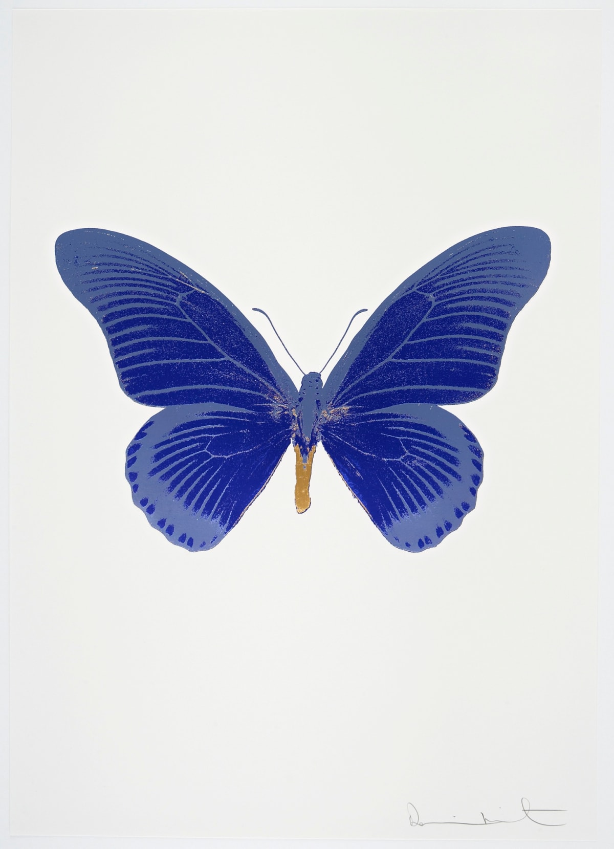 Damien Hirst The Souls IV - Westminster Blue/Cornflower Blue/African Gold Damien Hirst butterfly foil print for sale Damien Hirst print for sale , 2010 3 colour foil block on 300gsm Arches 88 archival paper. Signed and numbered. Published by Paul Stolper and Other Criteria 72 x 51cm OC8025 / 1418-48 Edition of 15