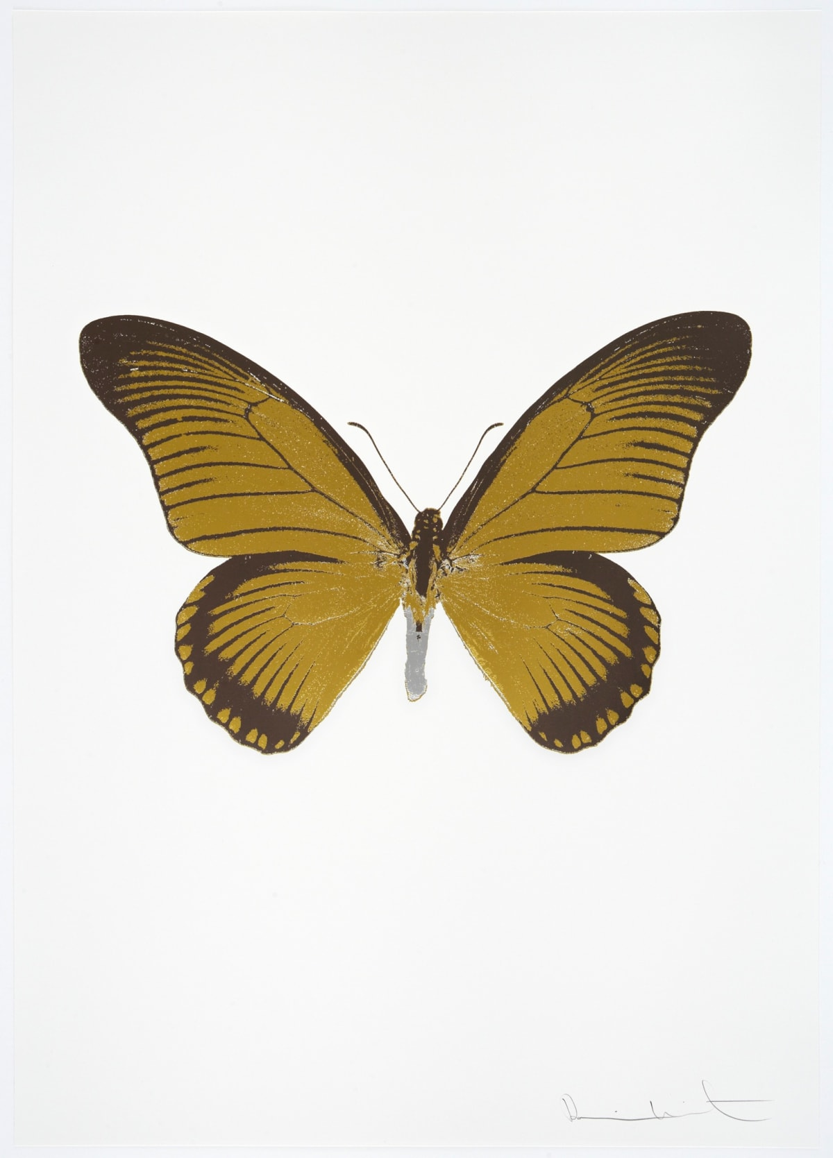 Damien Hirst The Souls IV - Oriental Gold/Gunmetal/Silver Gloss Damien Hirst butterfly foil print for sale Damien Hirst print for sale , 2010 3 colour foil block on 300gsm Arches 88 archival paper. Signed and numbered. Published by Paul Stolper and Other Criteria 72 x 51cm OC8032 / 1418-55 Edition of 15