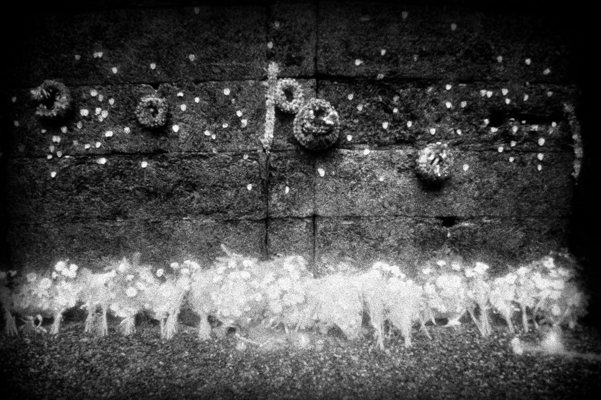 "Judy Glickman Lauder Execution Wall, Auschwitz extermination camp, Poland, 2018 Archival Pigment print 18 x 22"""