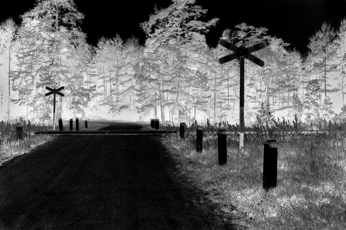 """Judy Glickman Lauder Railroad crossing, Treblinka, 2018 Archival Pigment print 18 x 22"""""""