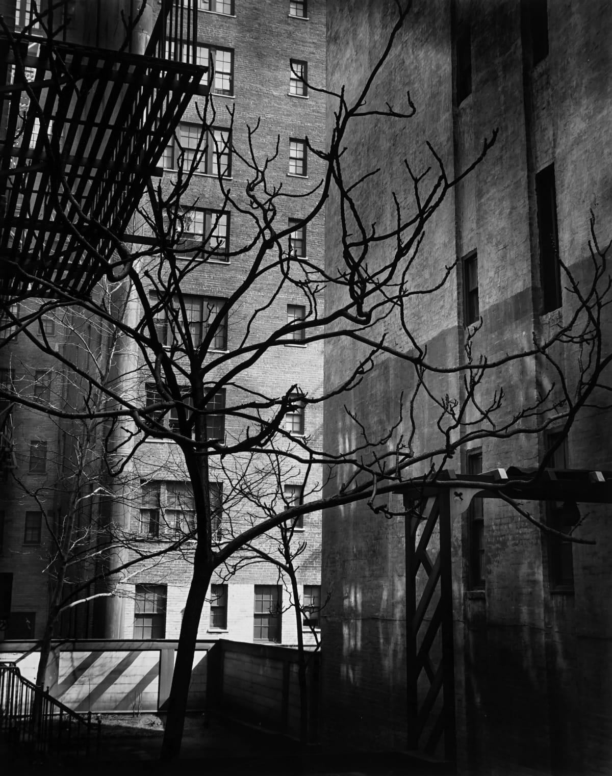 """Brett Weston Manhattan Courtyard, 1945 ( Printed 1951) Vintage Gelatin Silver Print Image - 7.5""""x9.5"""", Mount - 13""""x15"""", Matted - 16""""x20"""""""